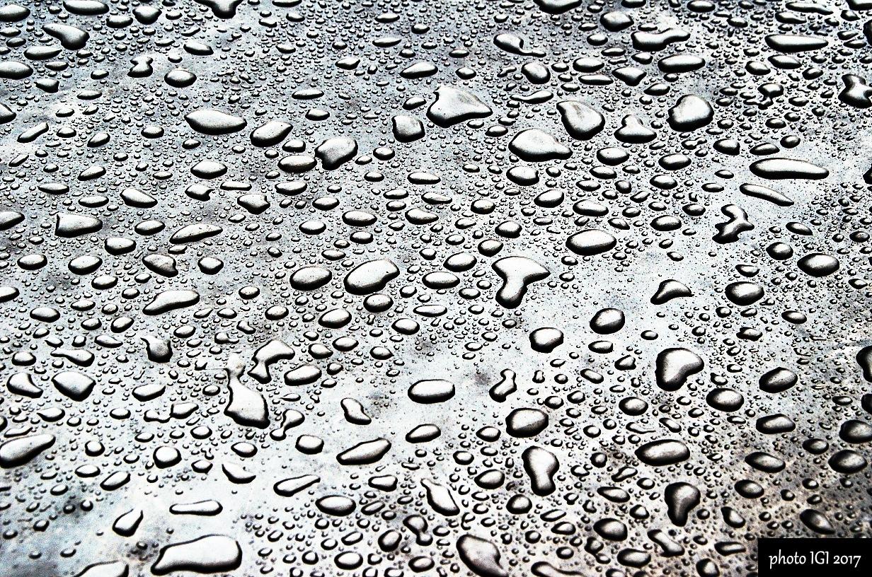 raining day  by Igor Bielický