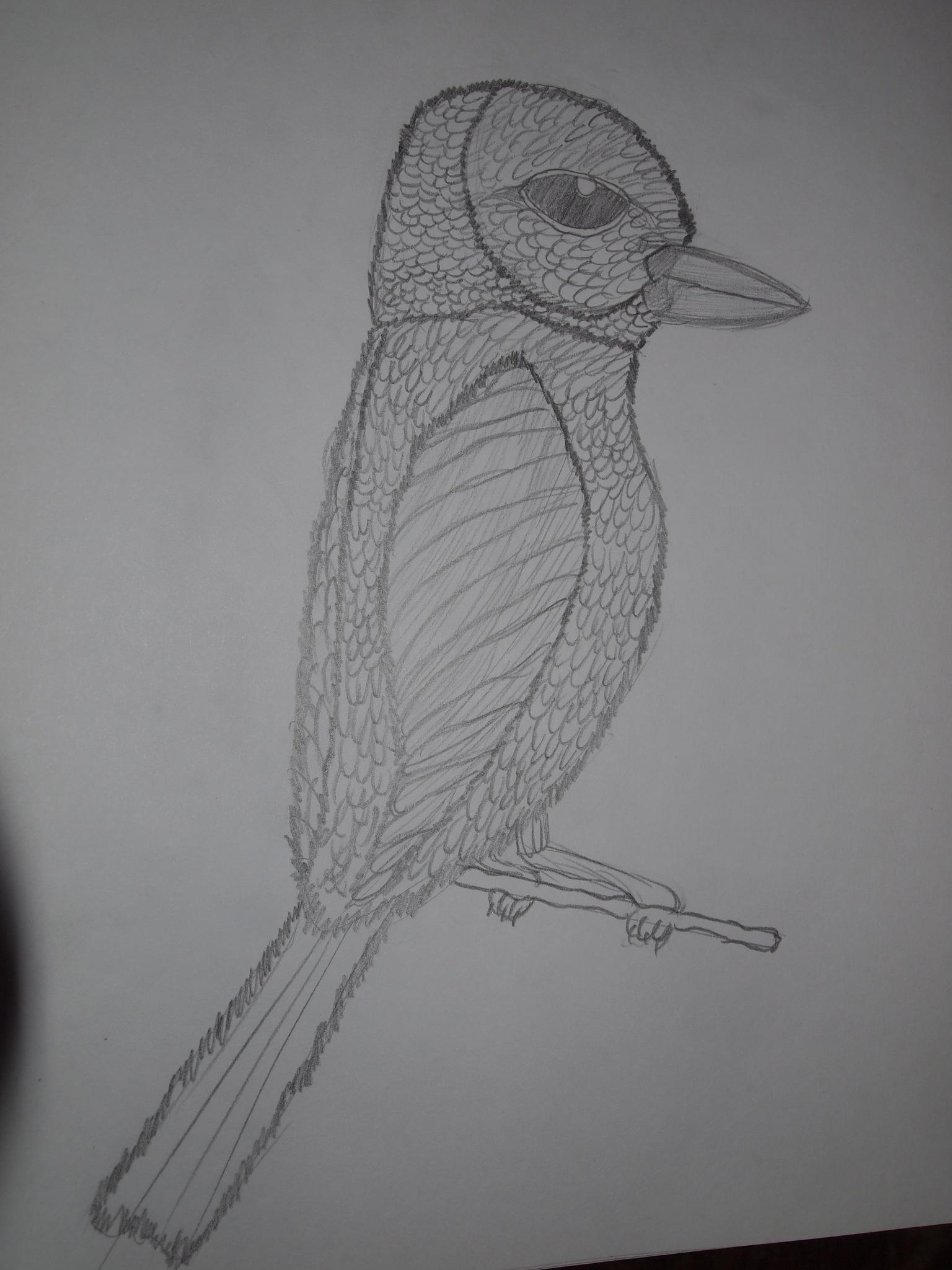 Bird Figa by Yulia2015