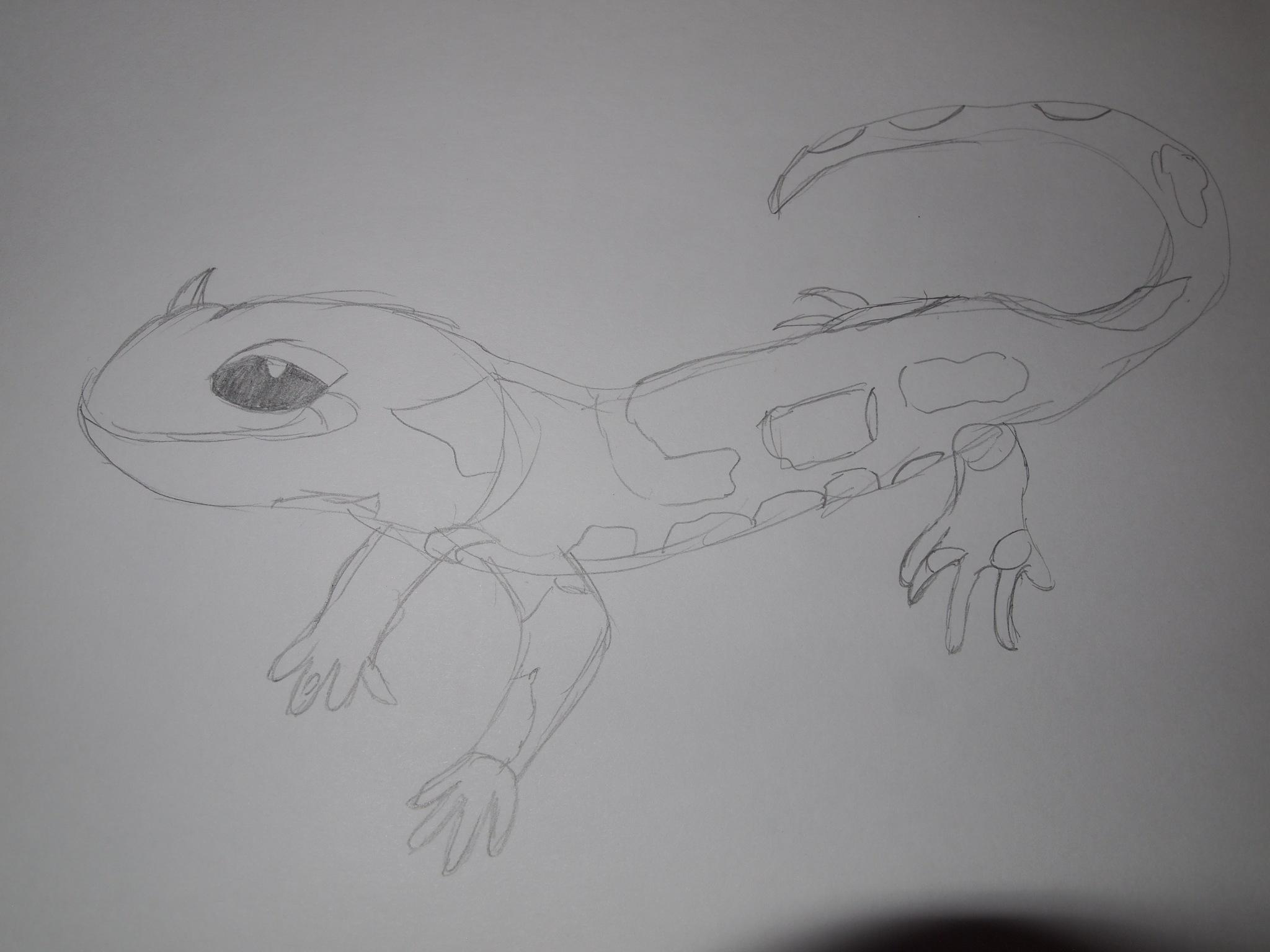 Salamander Blue by Yulia2015
