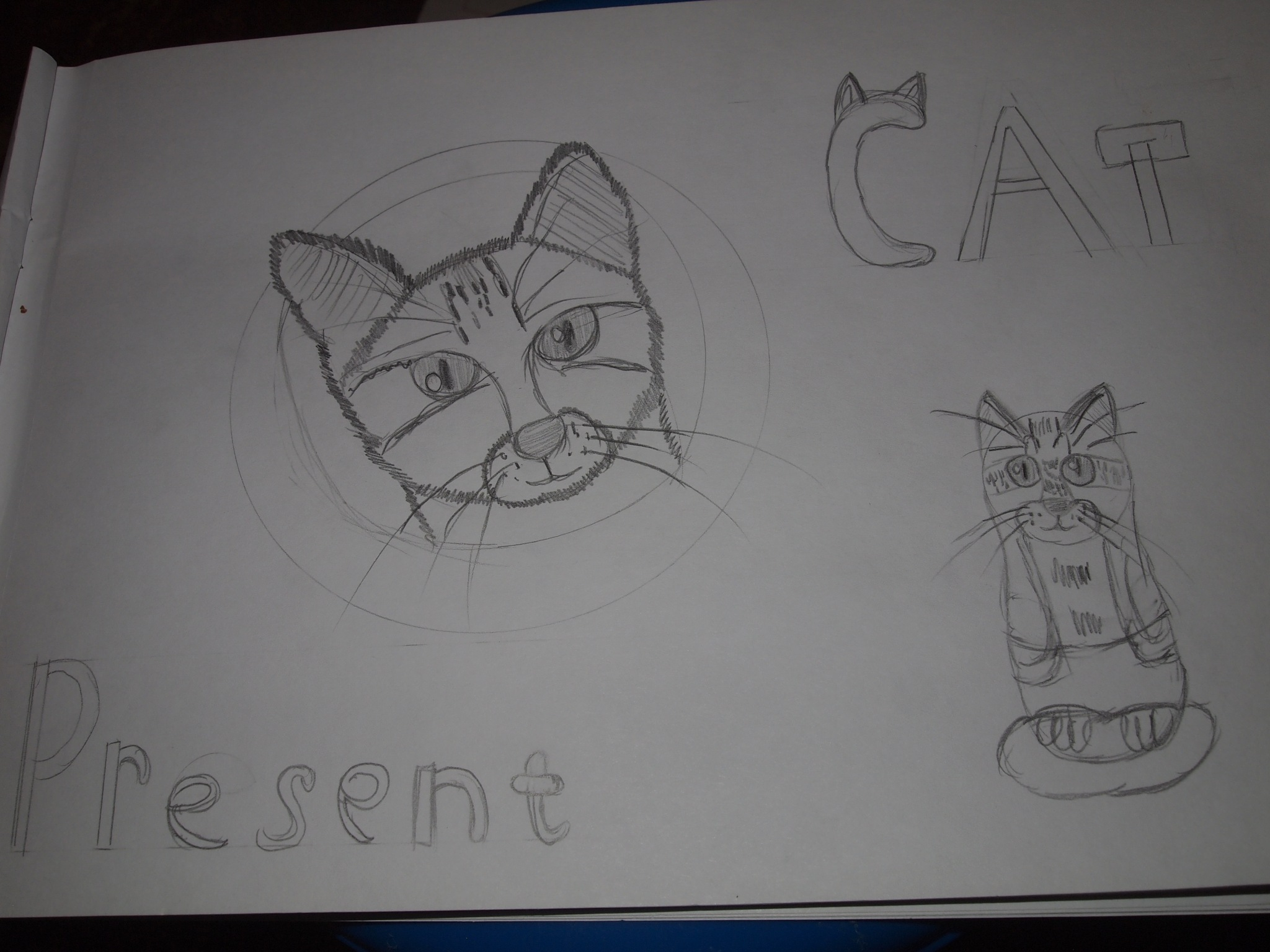 Cat Tom present by Yulia2015