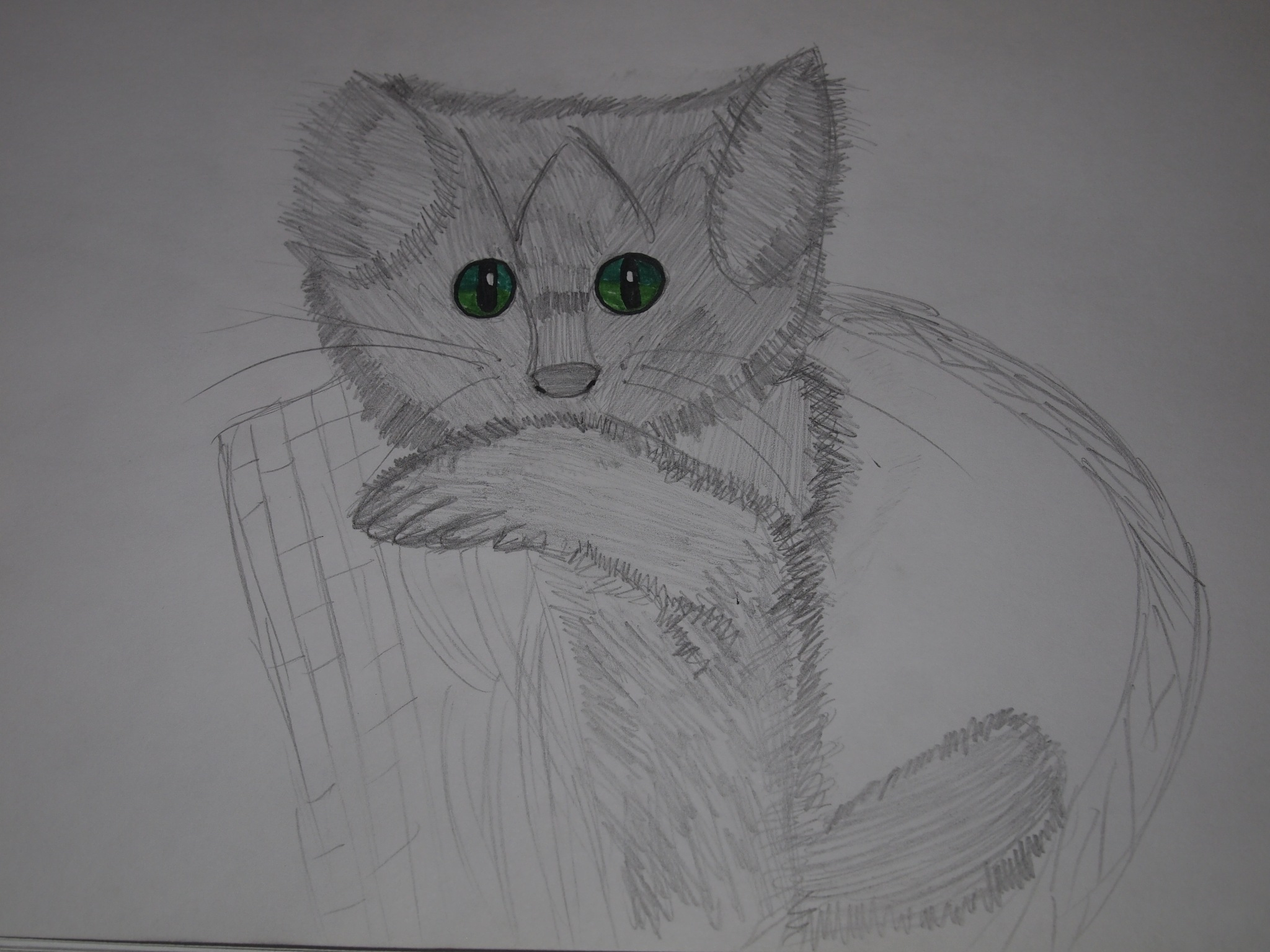 Cat Bat. by Yulia2015