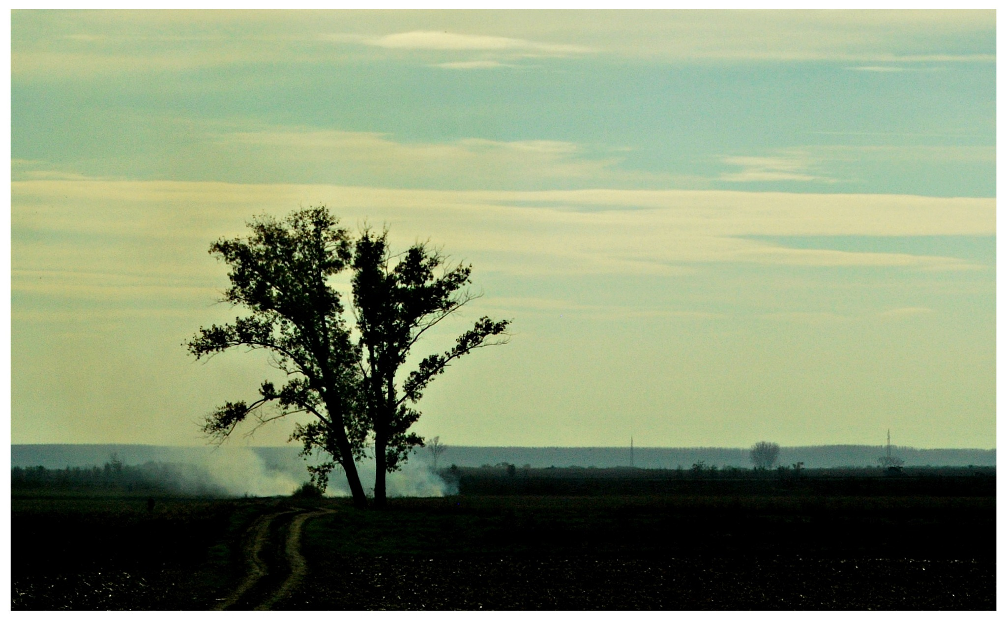 the land.. by Marija Petrovic