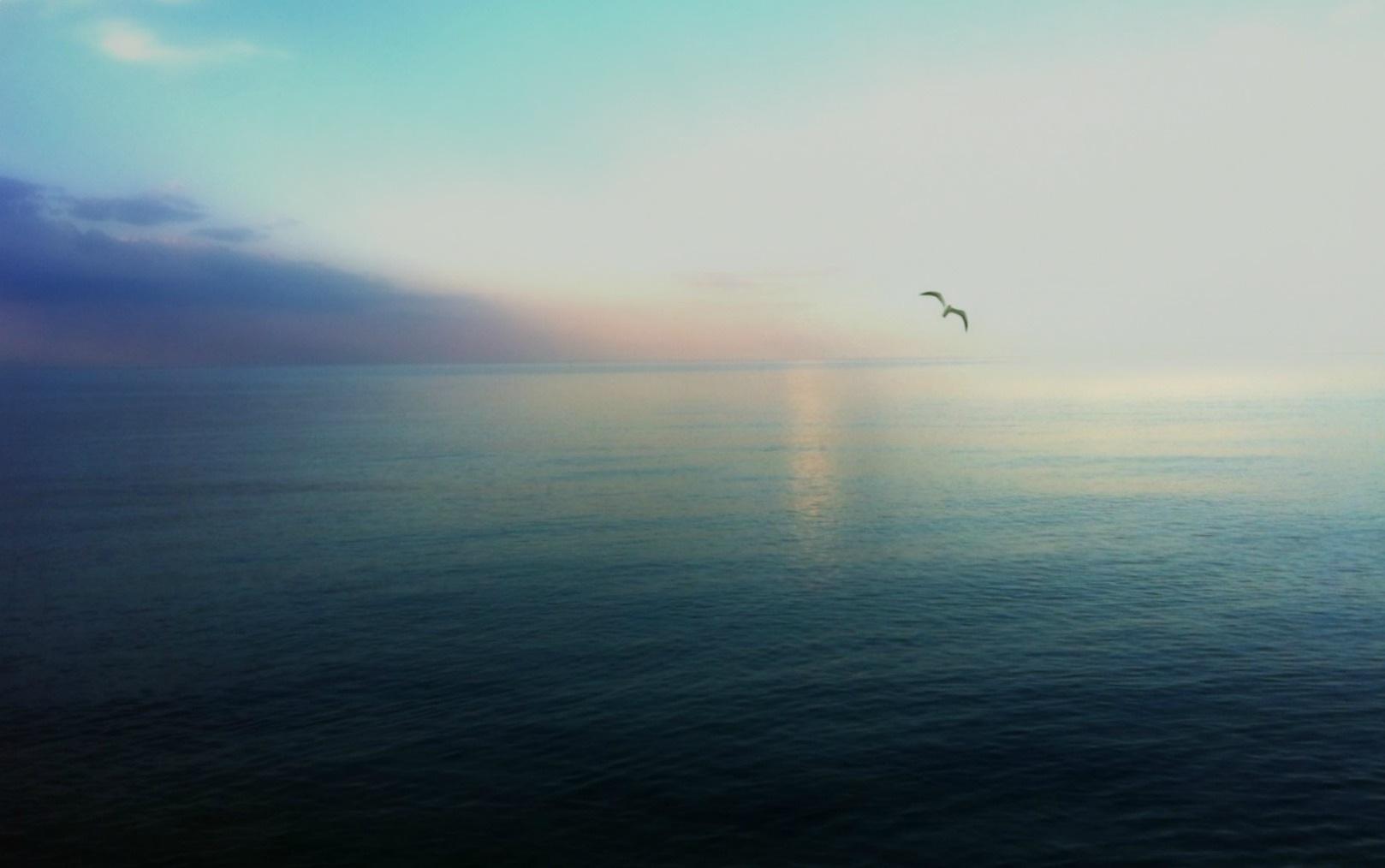 Blue foto.. by Marija Petrovic