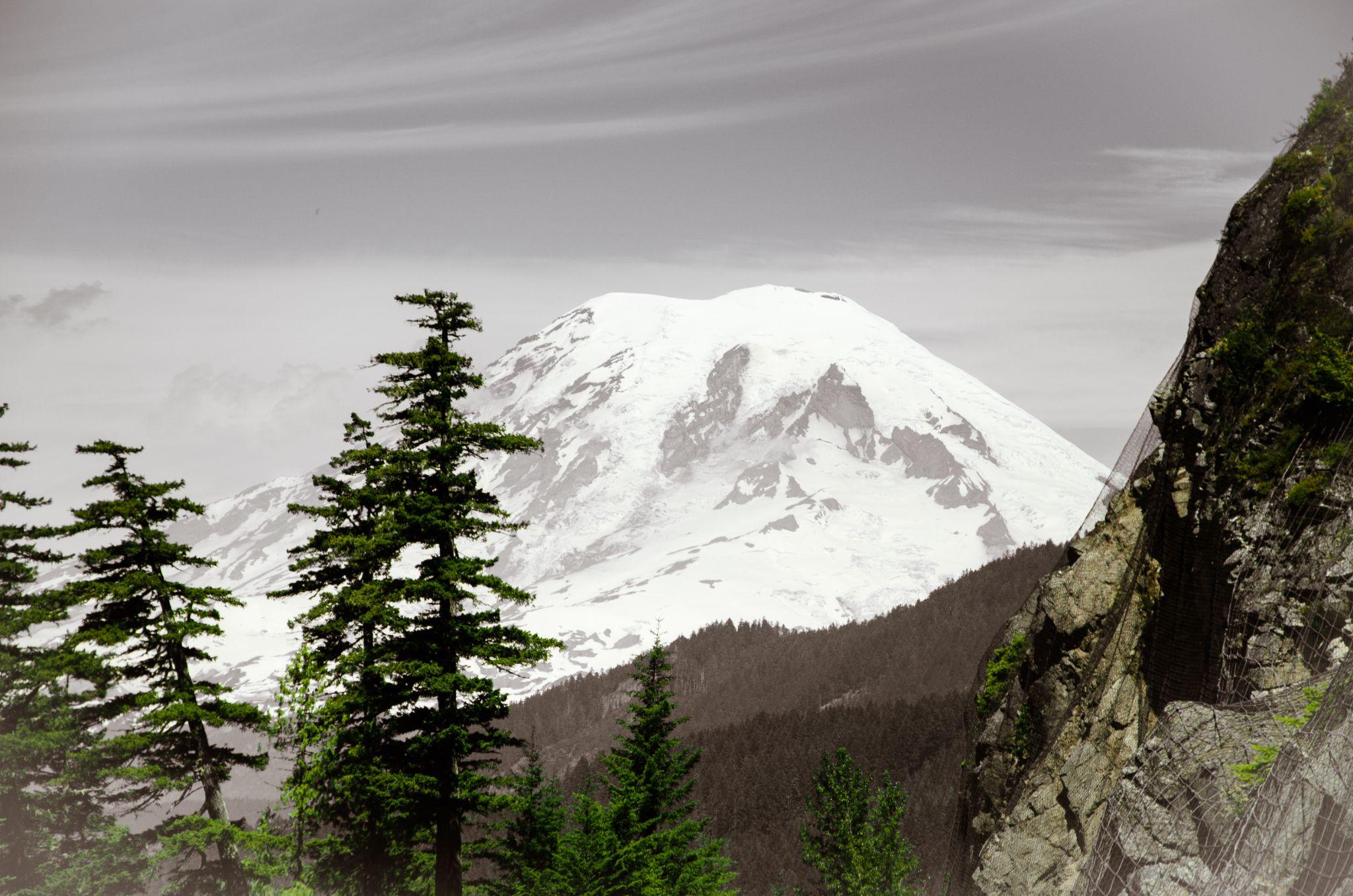 MT. Rainier by Judy Brewer