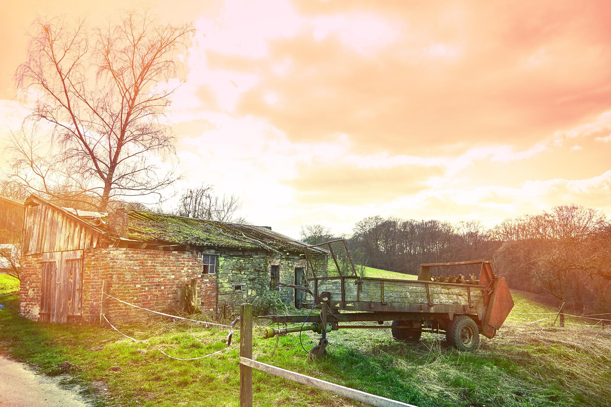 A lovely farm scene by Phillipp rnold