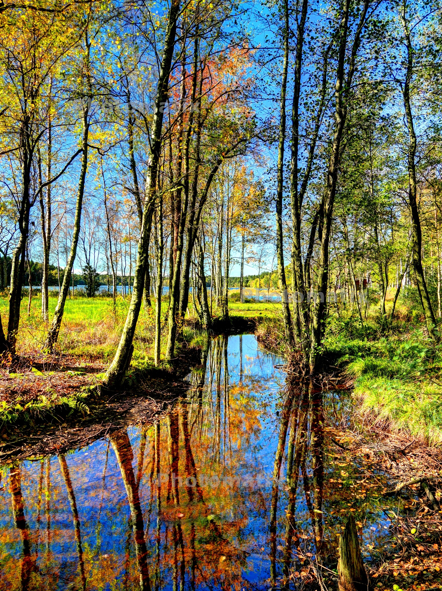 Autumn reflections by Jesper