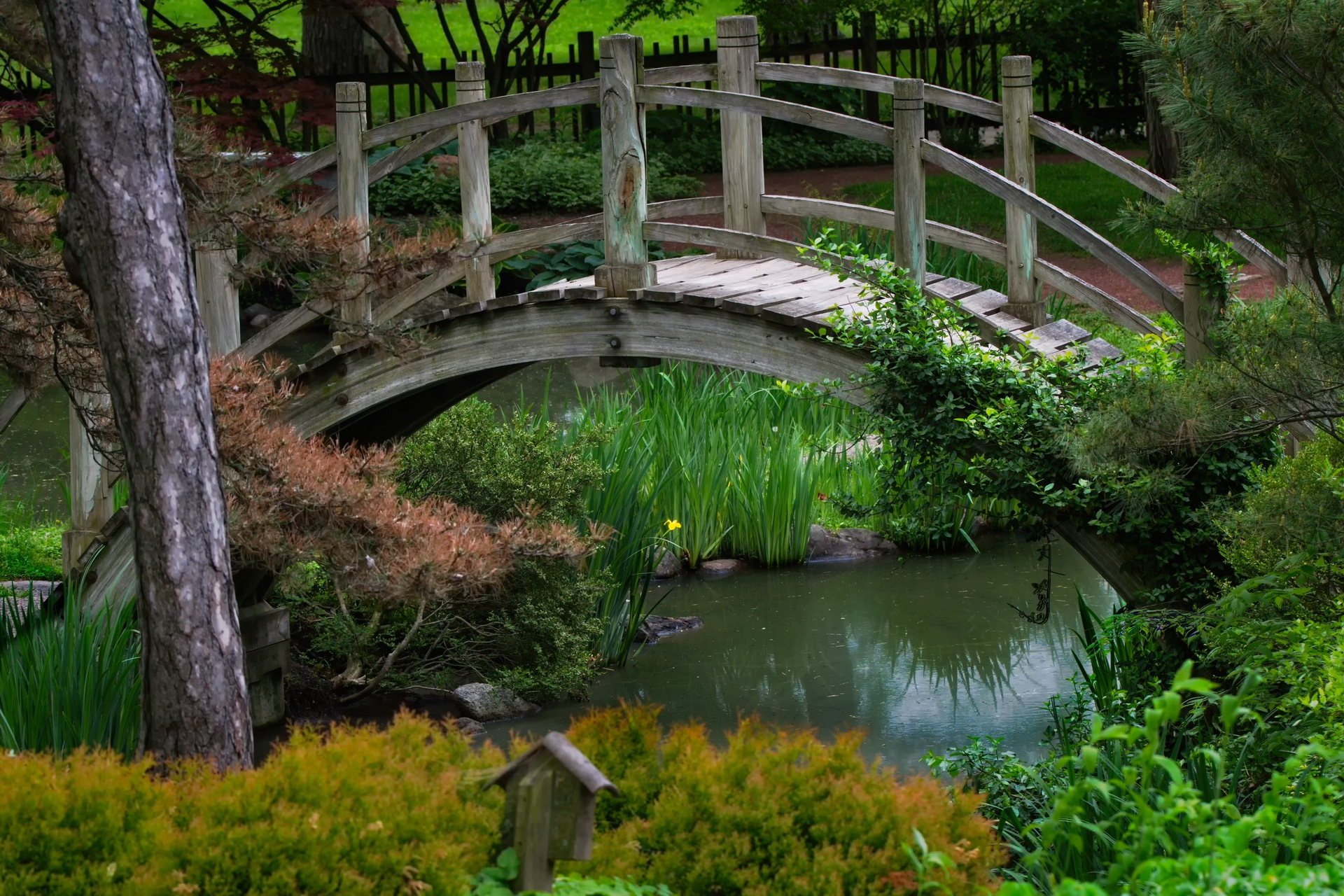 Japanese Garden Spring by guspanella