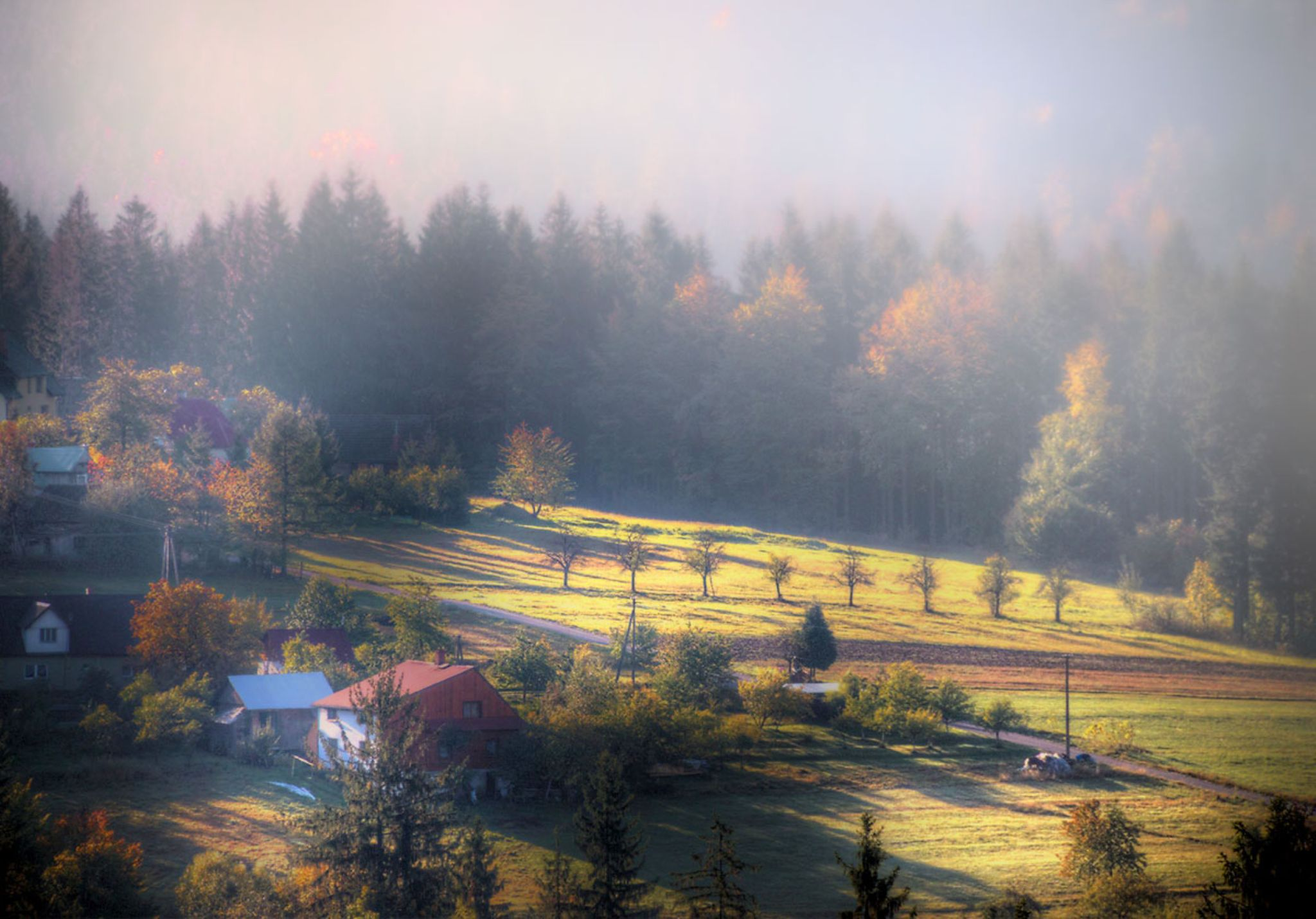 Autumn in the lens by zbych41
