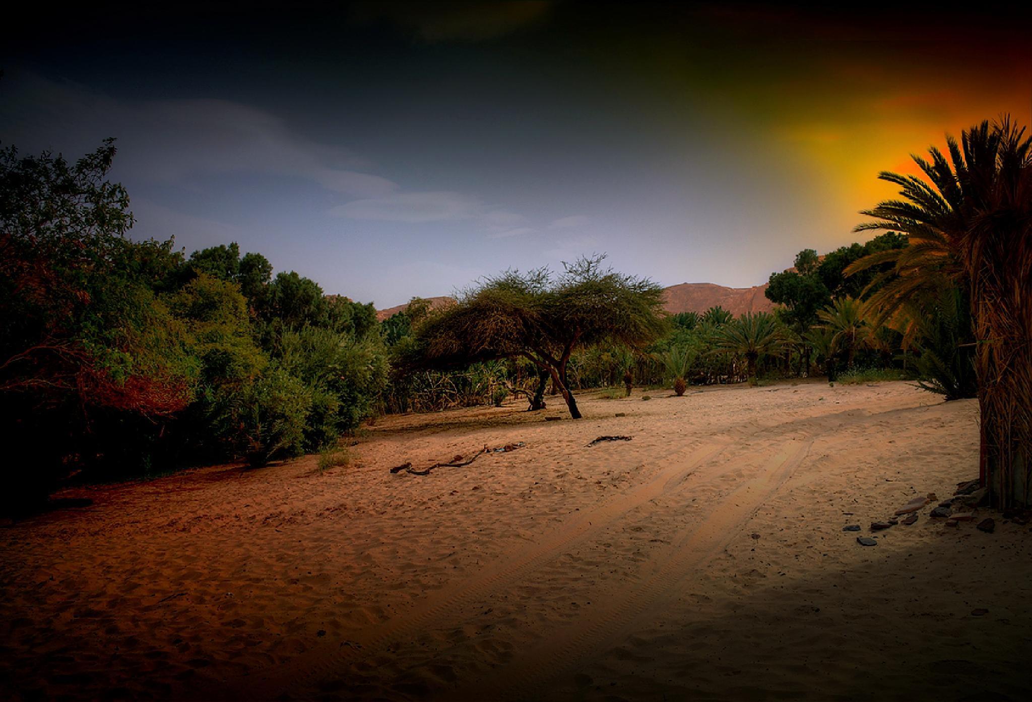 Półwysep Synaj. Zachód słońca by zbych41