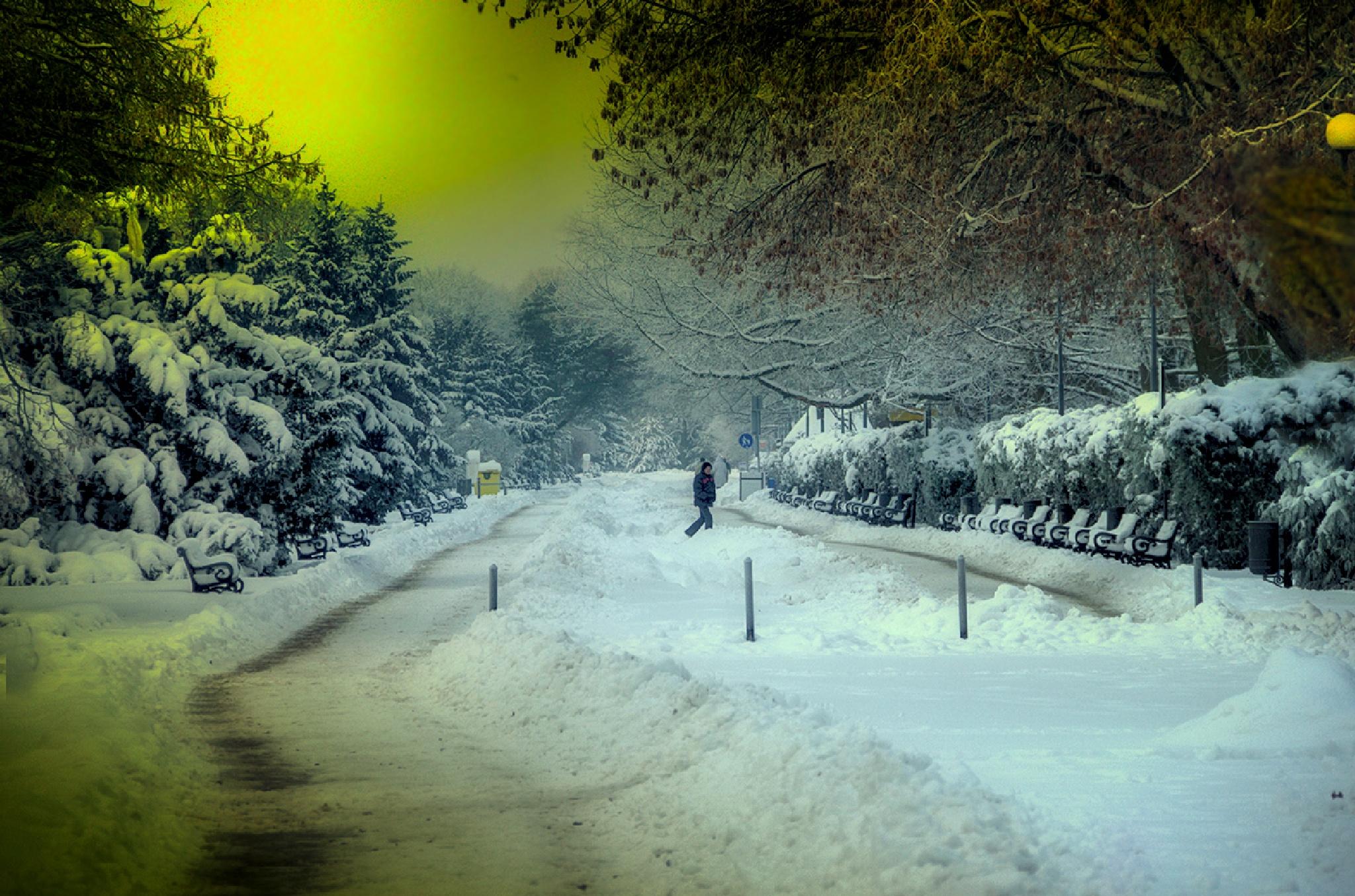 Przyszła zima  by zbych41