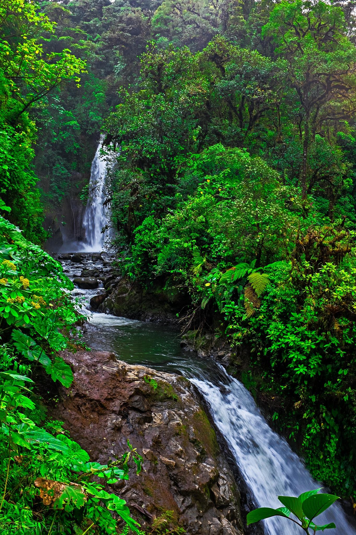 cascading waterfalls by blindthirdeye