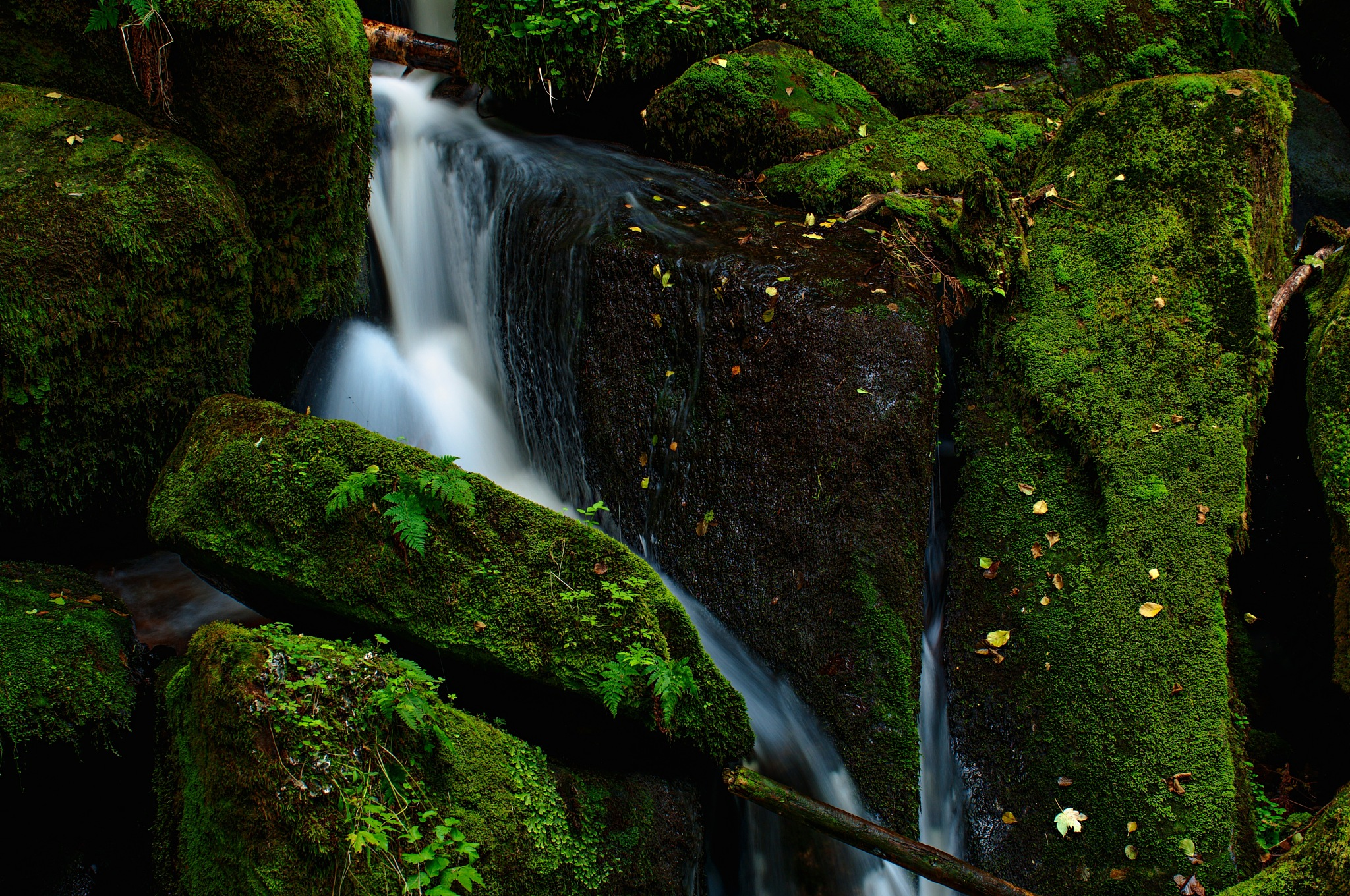 Wolfgang's waterfalls IV. by CARRADORE