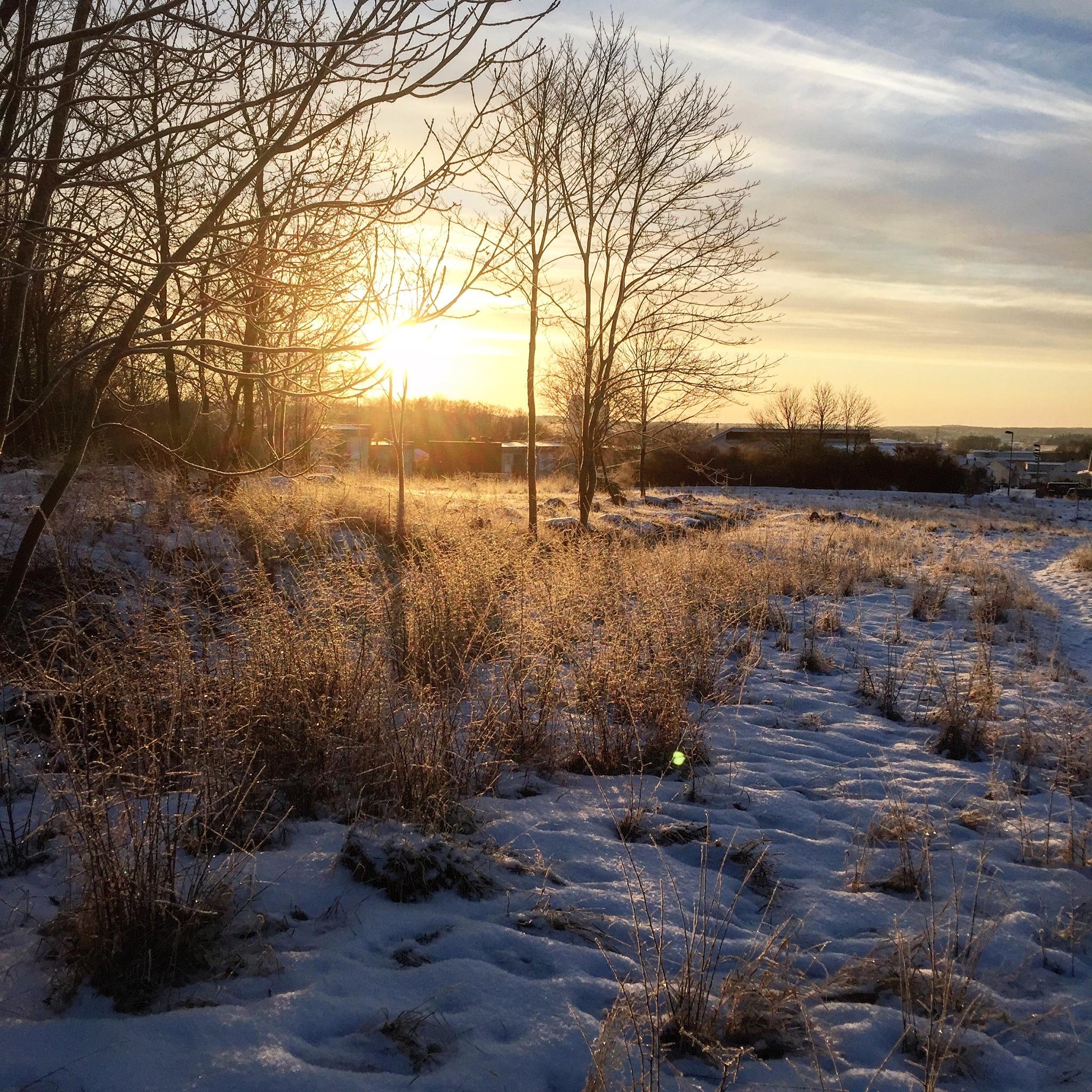 Early sunrise by Ceciliasderlund