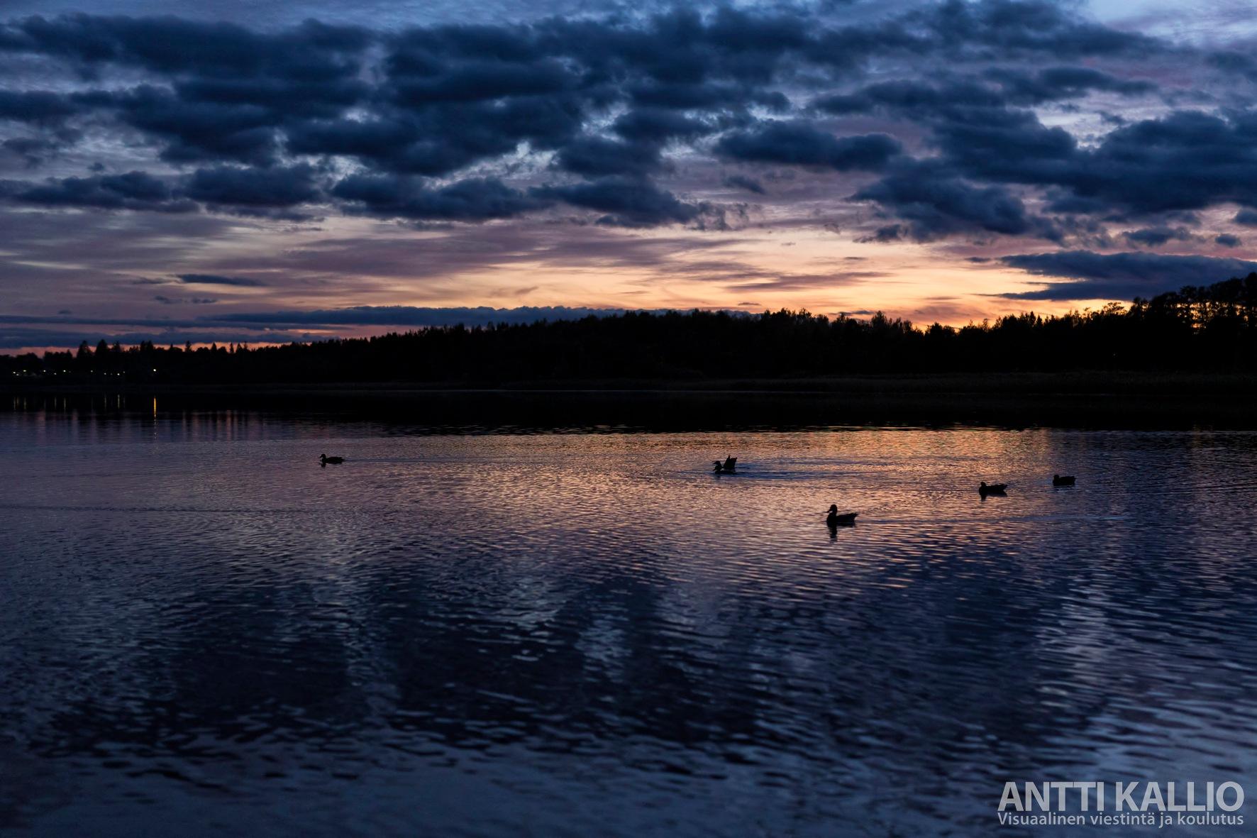 Lake scenery at night by photographerAnttiKallio