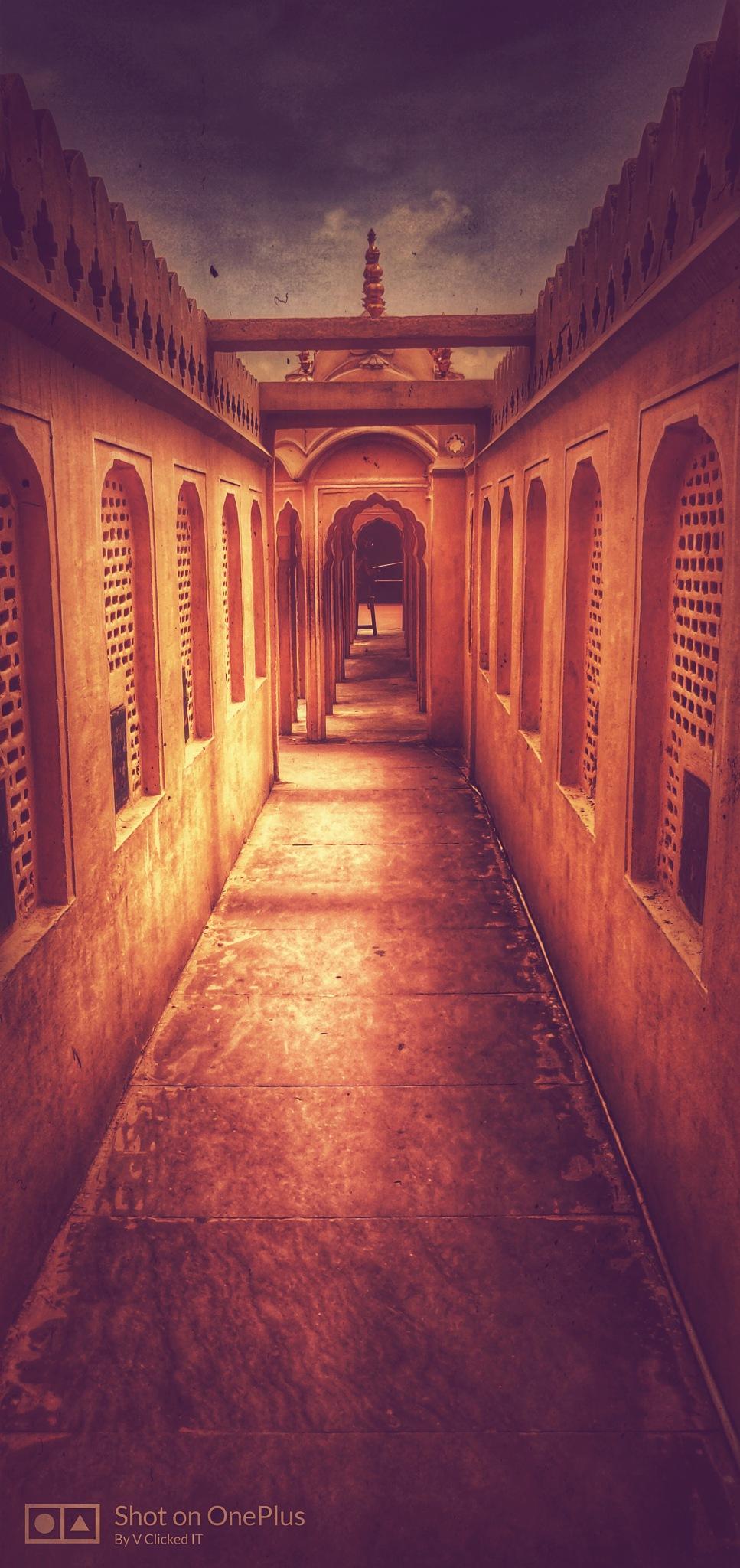 wind palace, jaipur by Vikrant