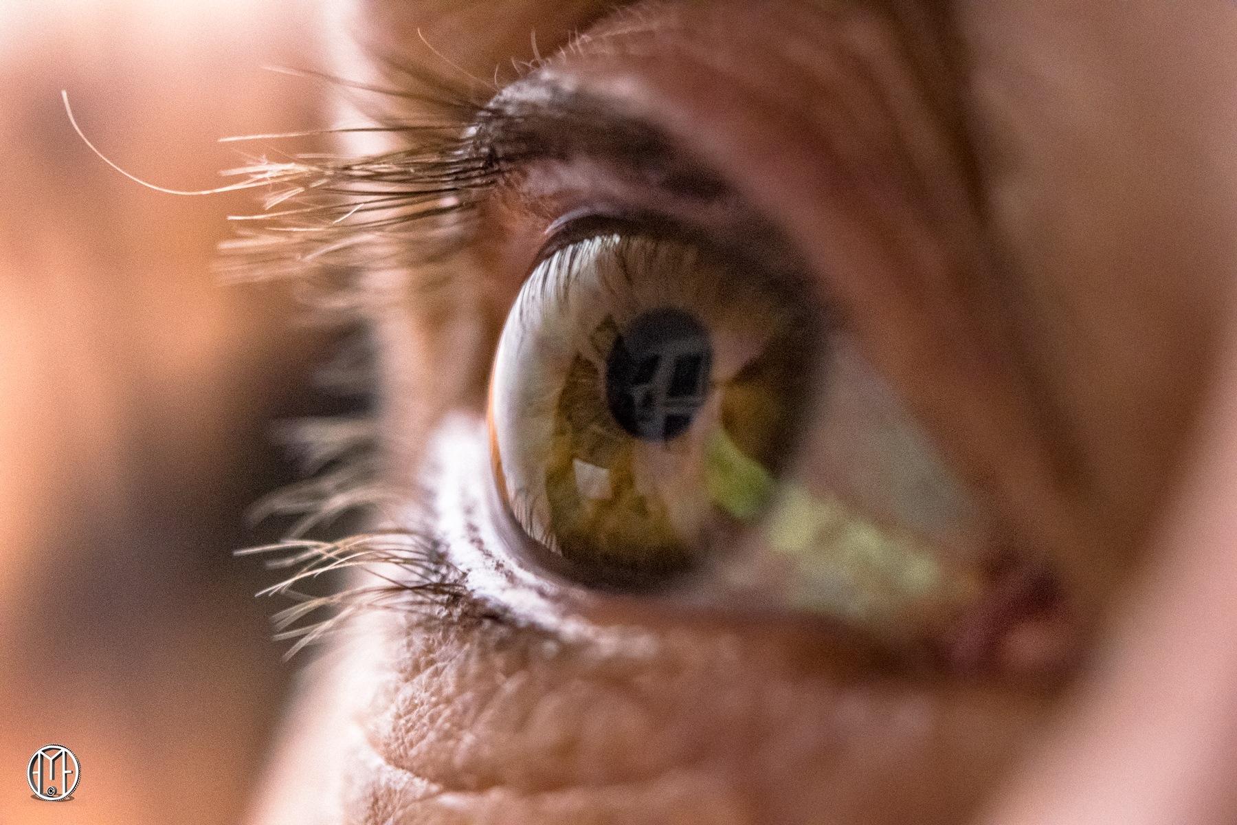 Moni's Eye Macro by Gabriel Ochoa Rojas