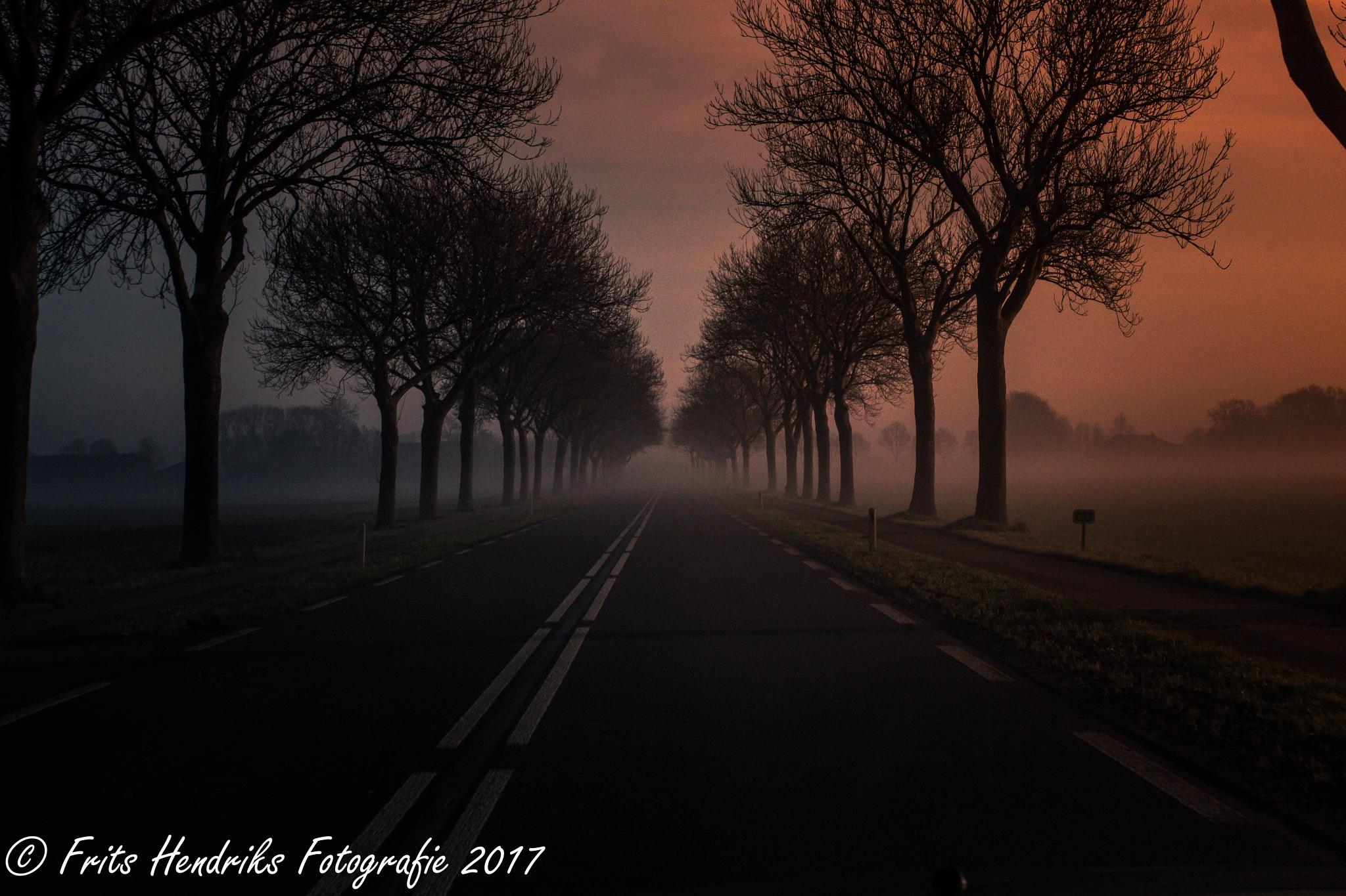 Untitled by fritshendriksfotografie