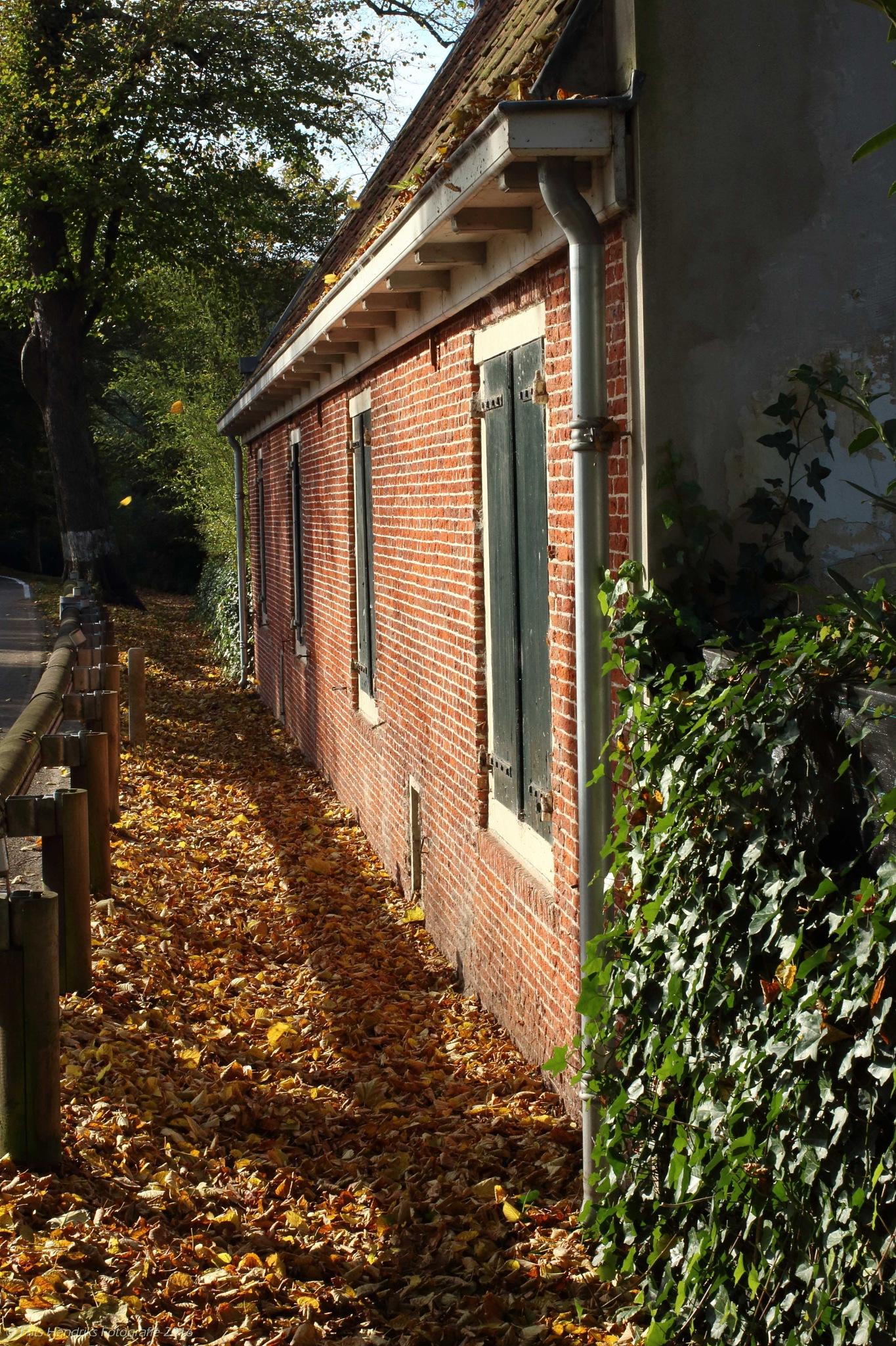 autumn in Elswout by fritshendriksfotografie