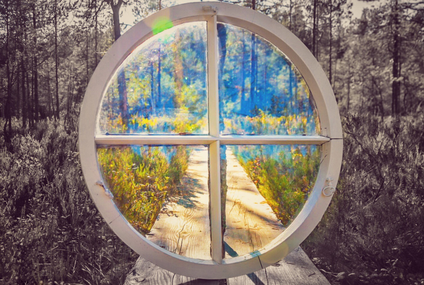 A window to another world. by Heidi Salo