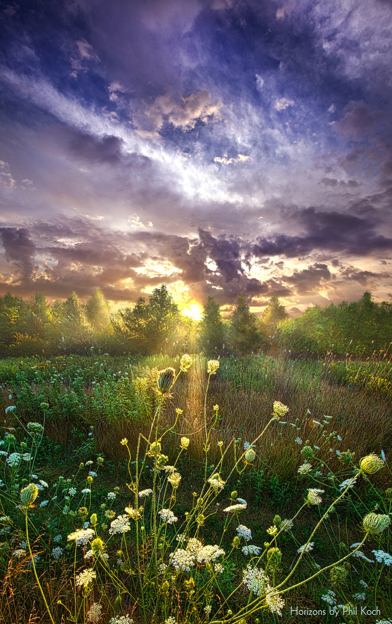 And In The Naked Light I Saw by PhilKoch