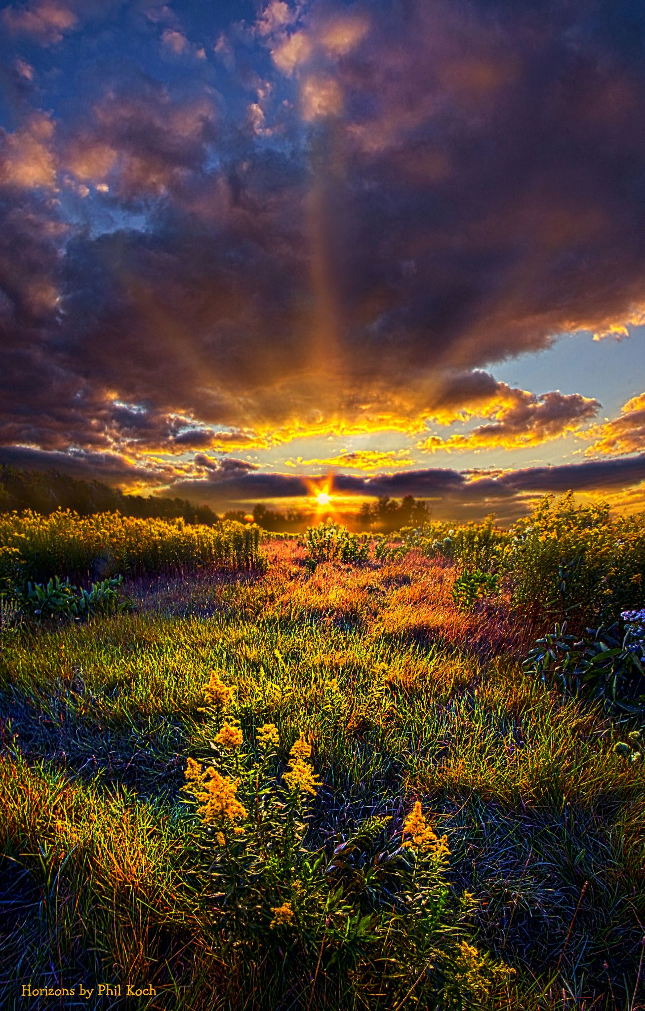 Thank You by PhilKoch
