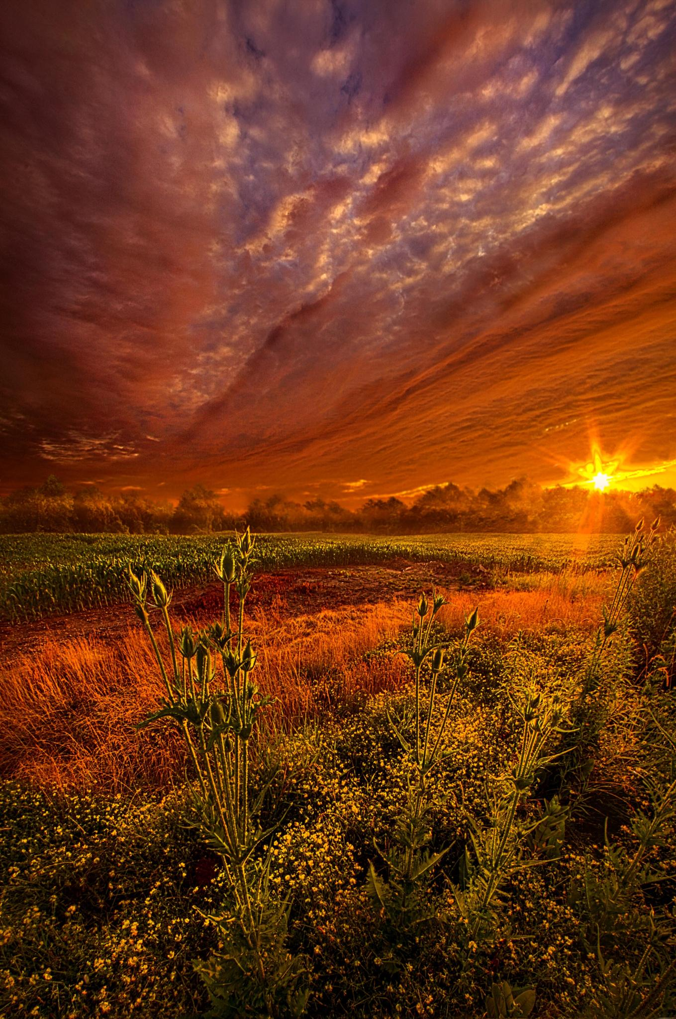 The Never Ending Story by PhilKoch