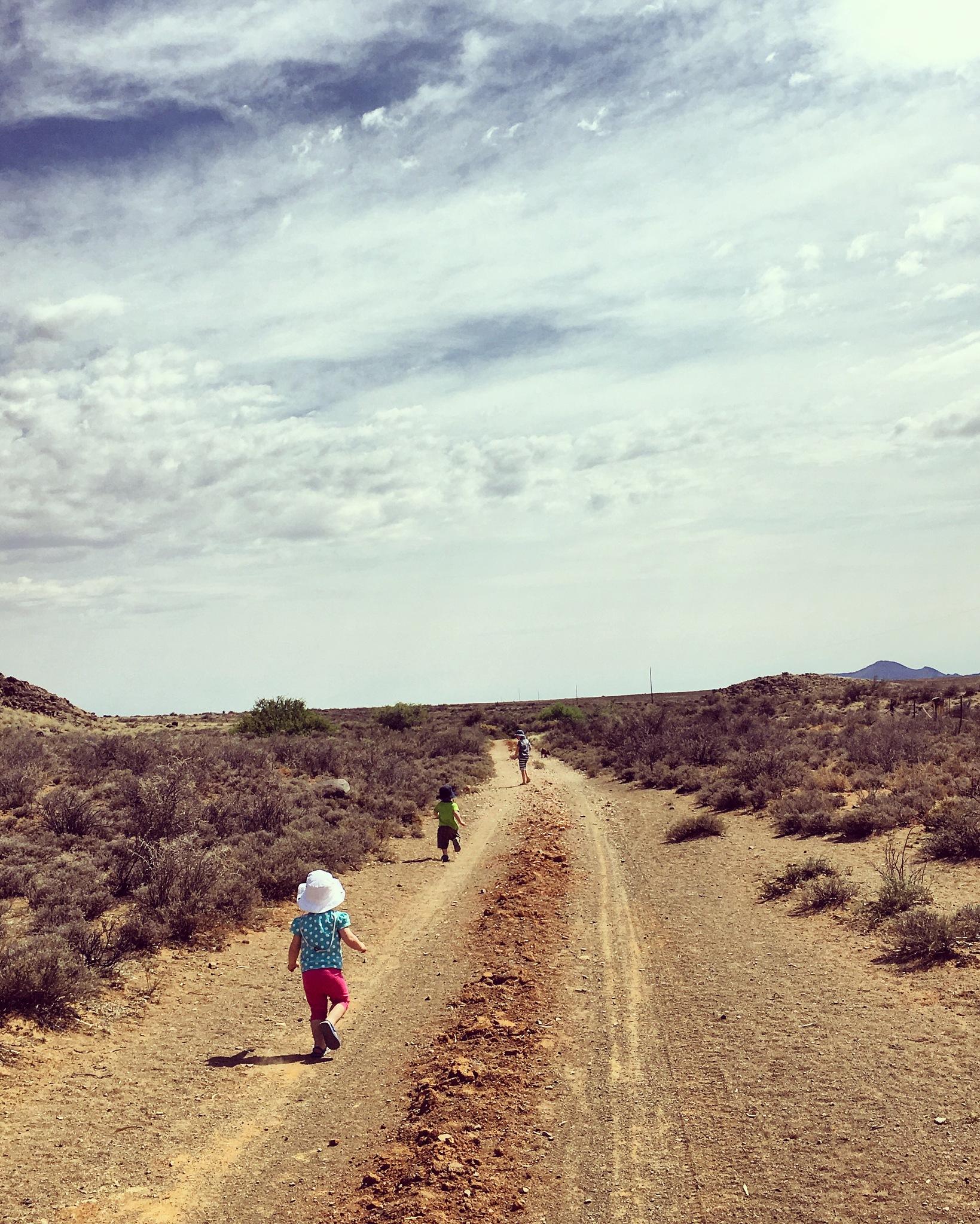 Running free  by Anneli Grimbeek