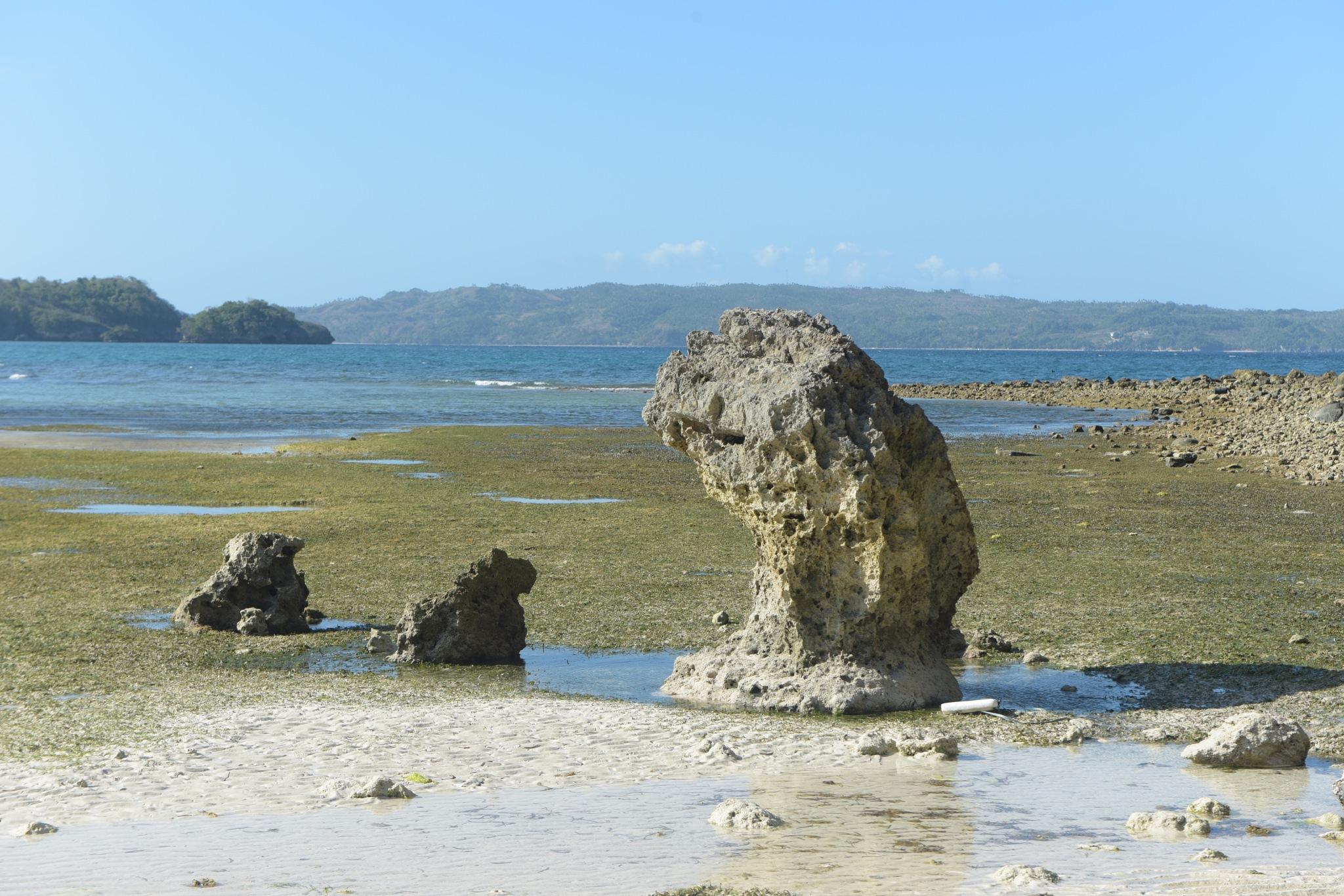 Low tide by rgalbarillo