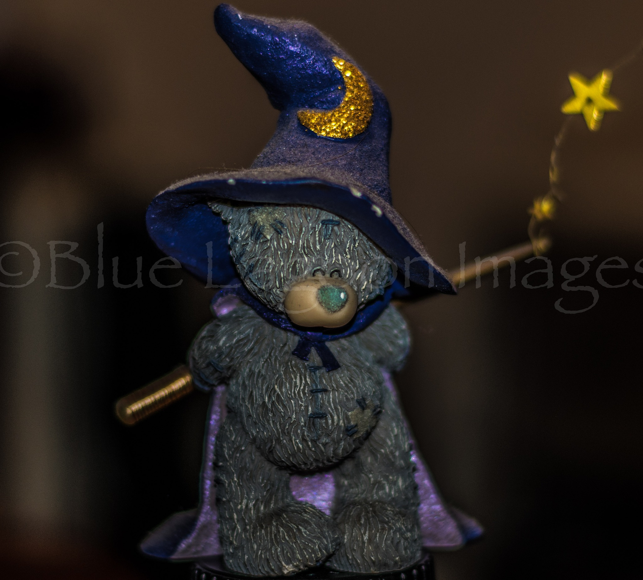 Wizard by Blue Lagoon Images