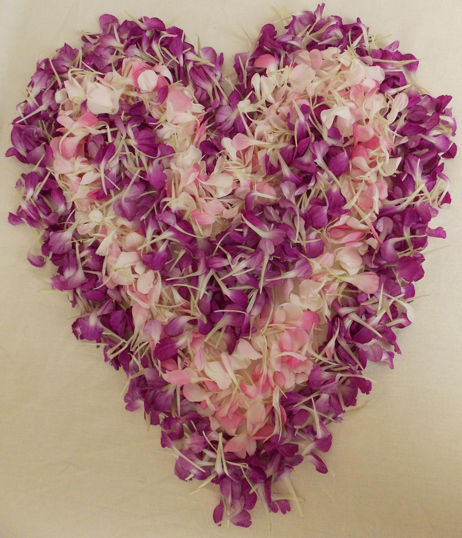 Heart Petals by Esther Allberry