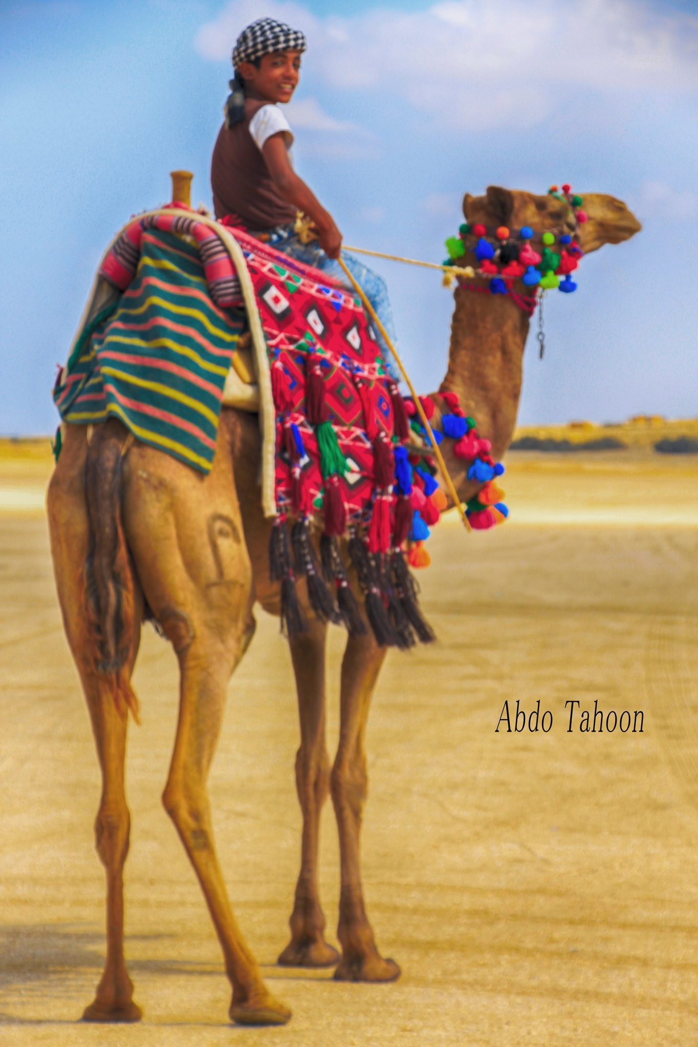 Camel by Abdo Tahoon