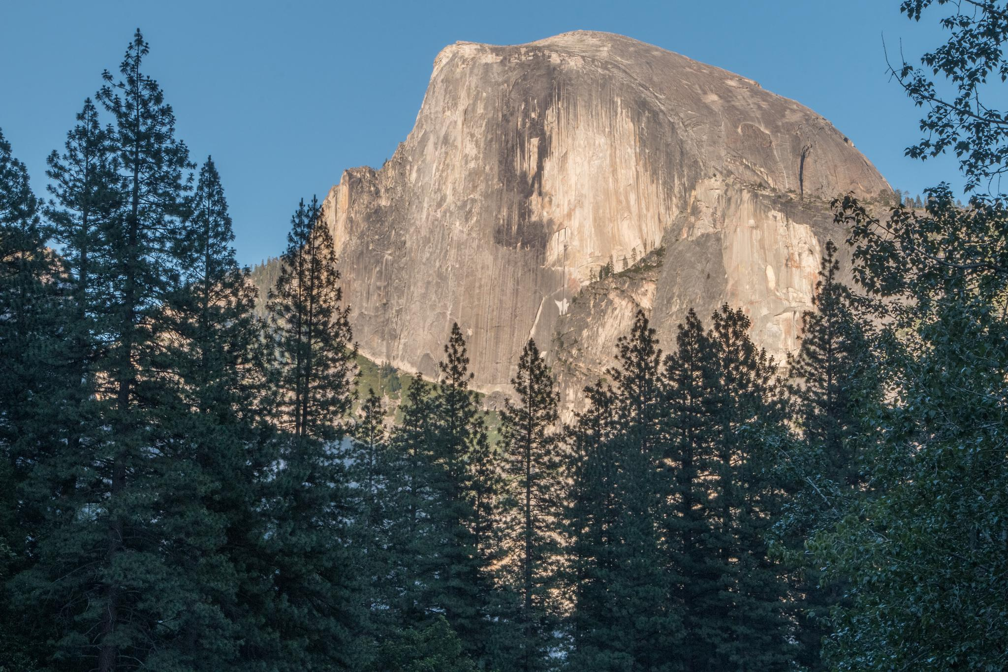 Photo in Landscape #2015 #dream wolf photography #yosemite #half dome #©scott brown