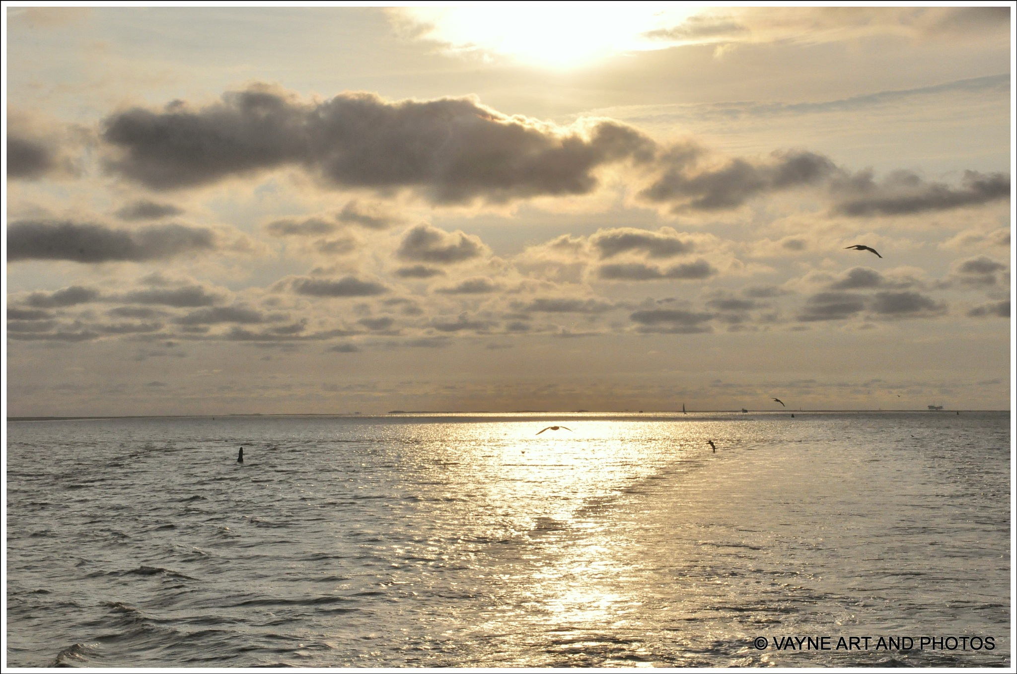 Photo in Landscape #sea island  sunset