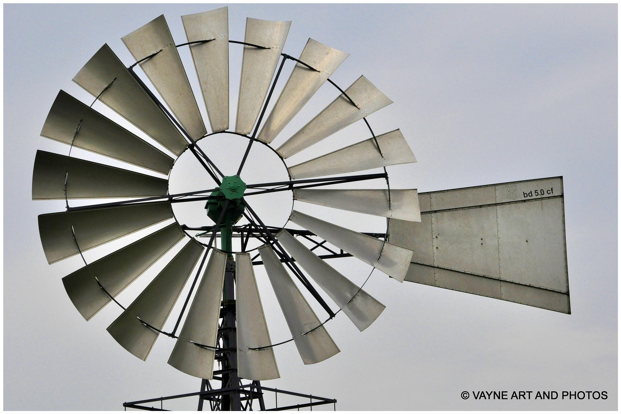 Dutch Mill by Jacob van der Veen
