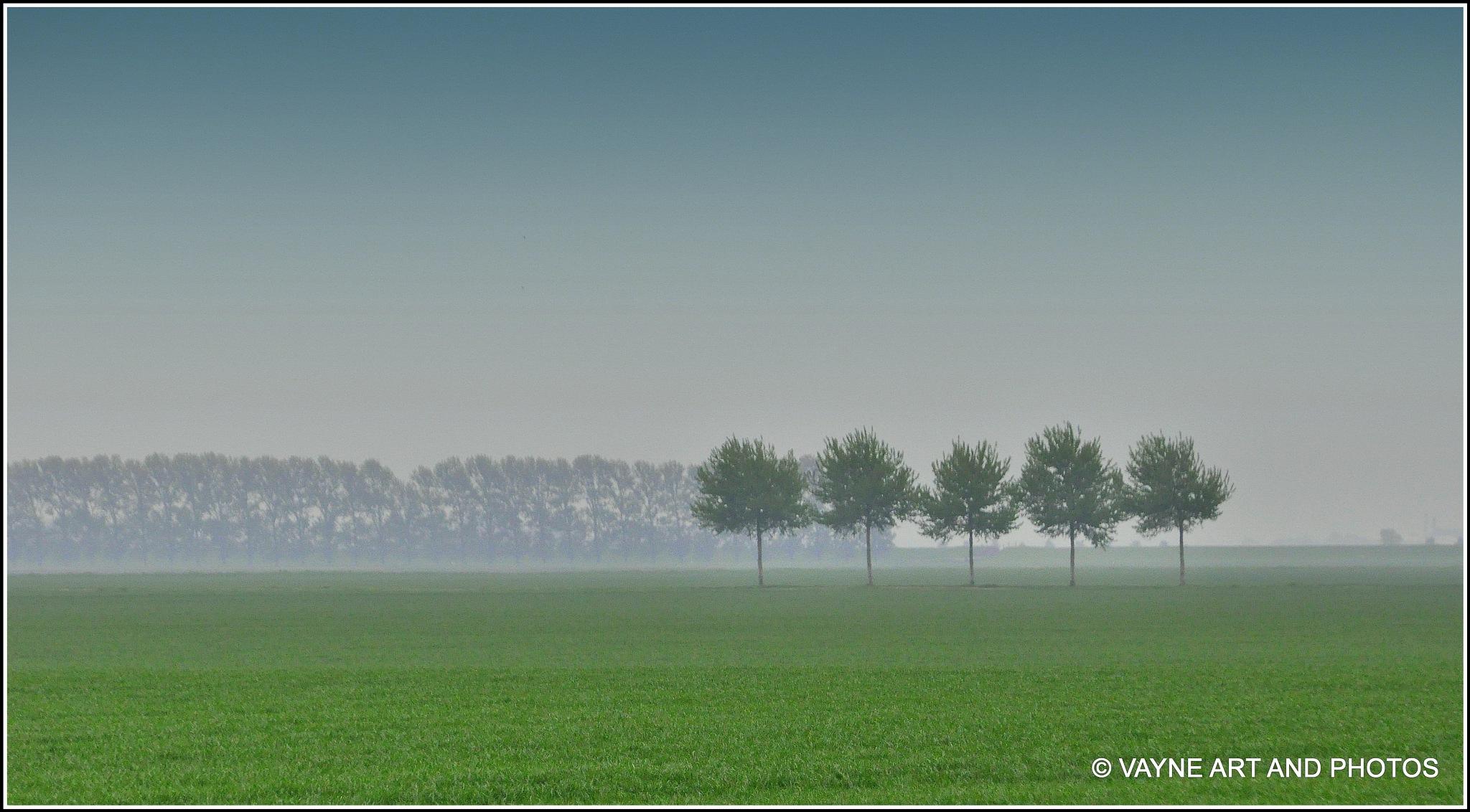 Five  by Jacob van der Veen