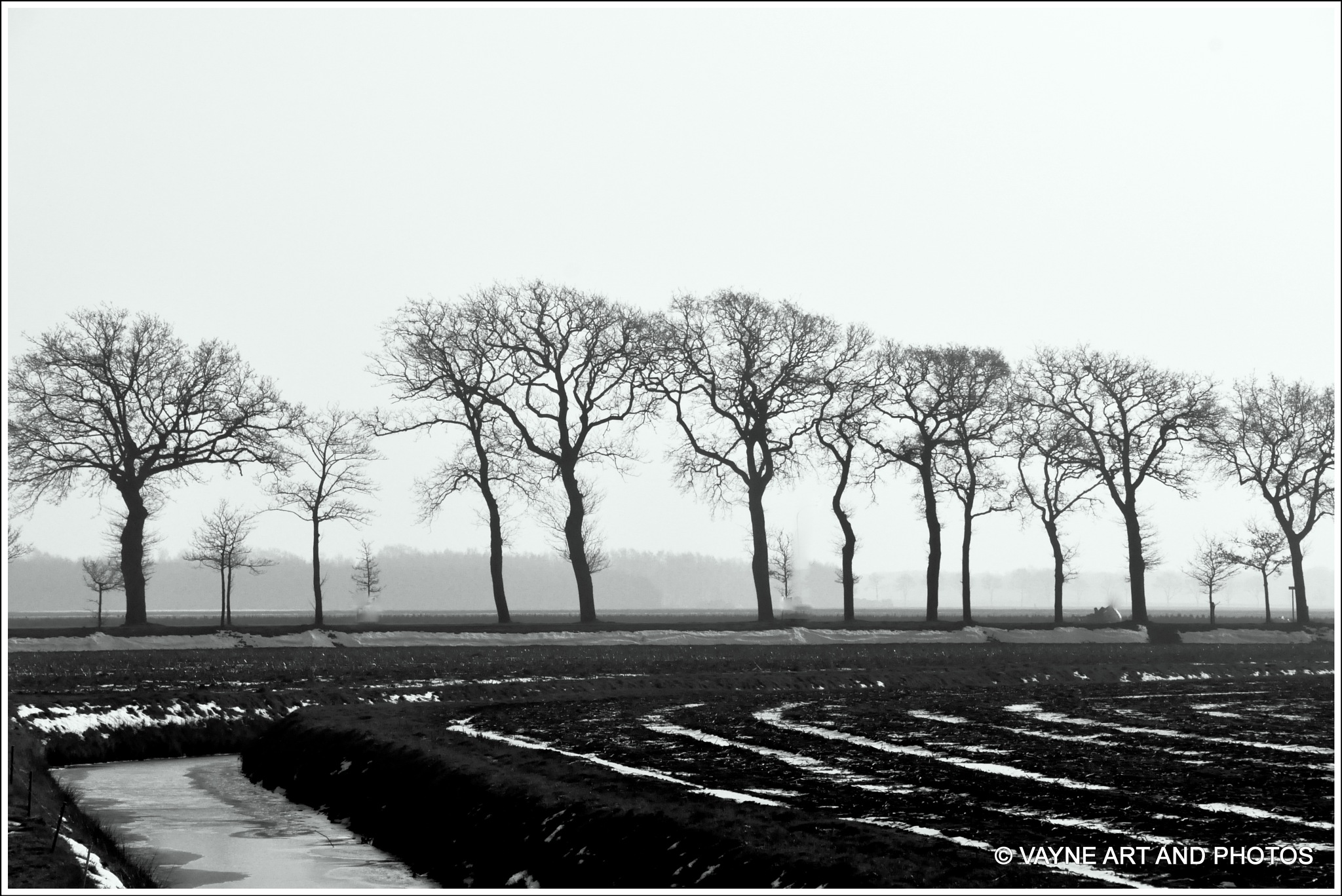 Nice in black and white by Jacob van der Veen