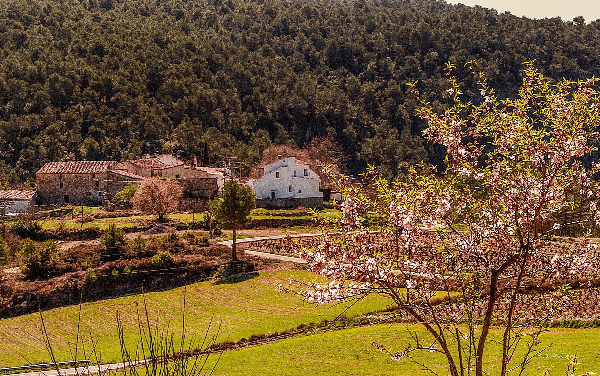 The tiny village of Bonany by JaumeVidal