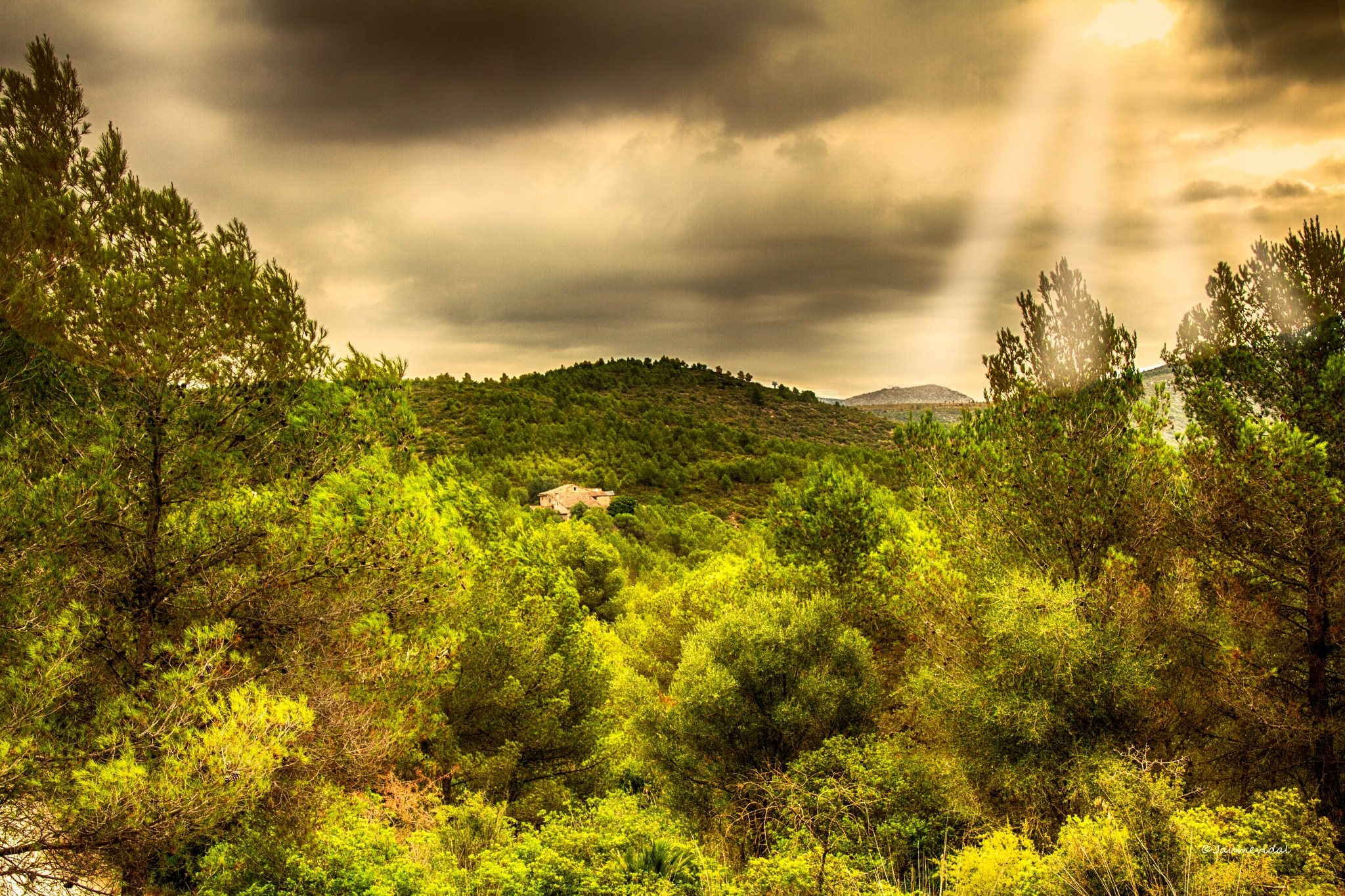 Typical Mediterranean forest landscape and Catalan farmhouse by JaumeVidal