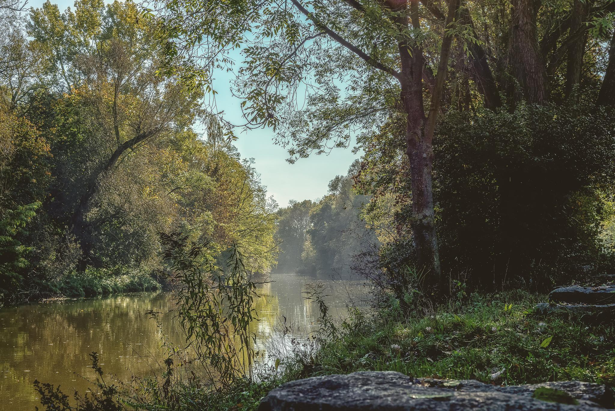 river Pegnitz by Robert Glöckner