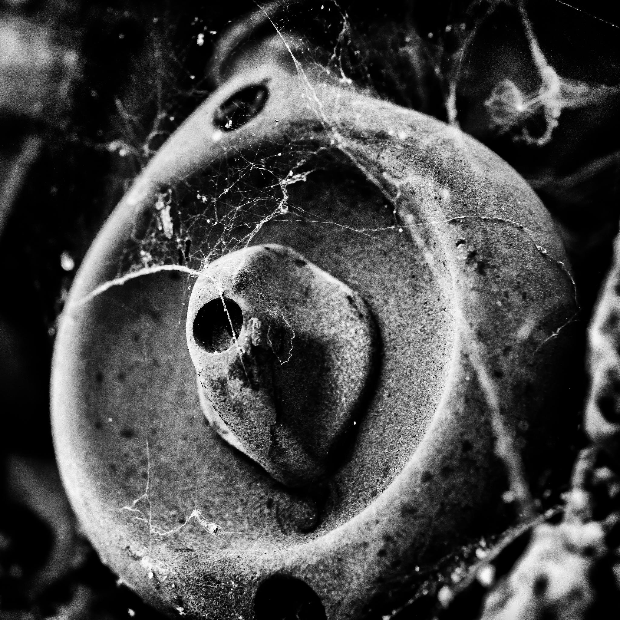 switch by Robert Glöckner
