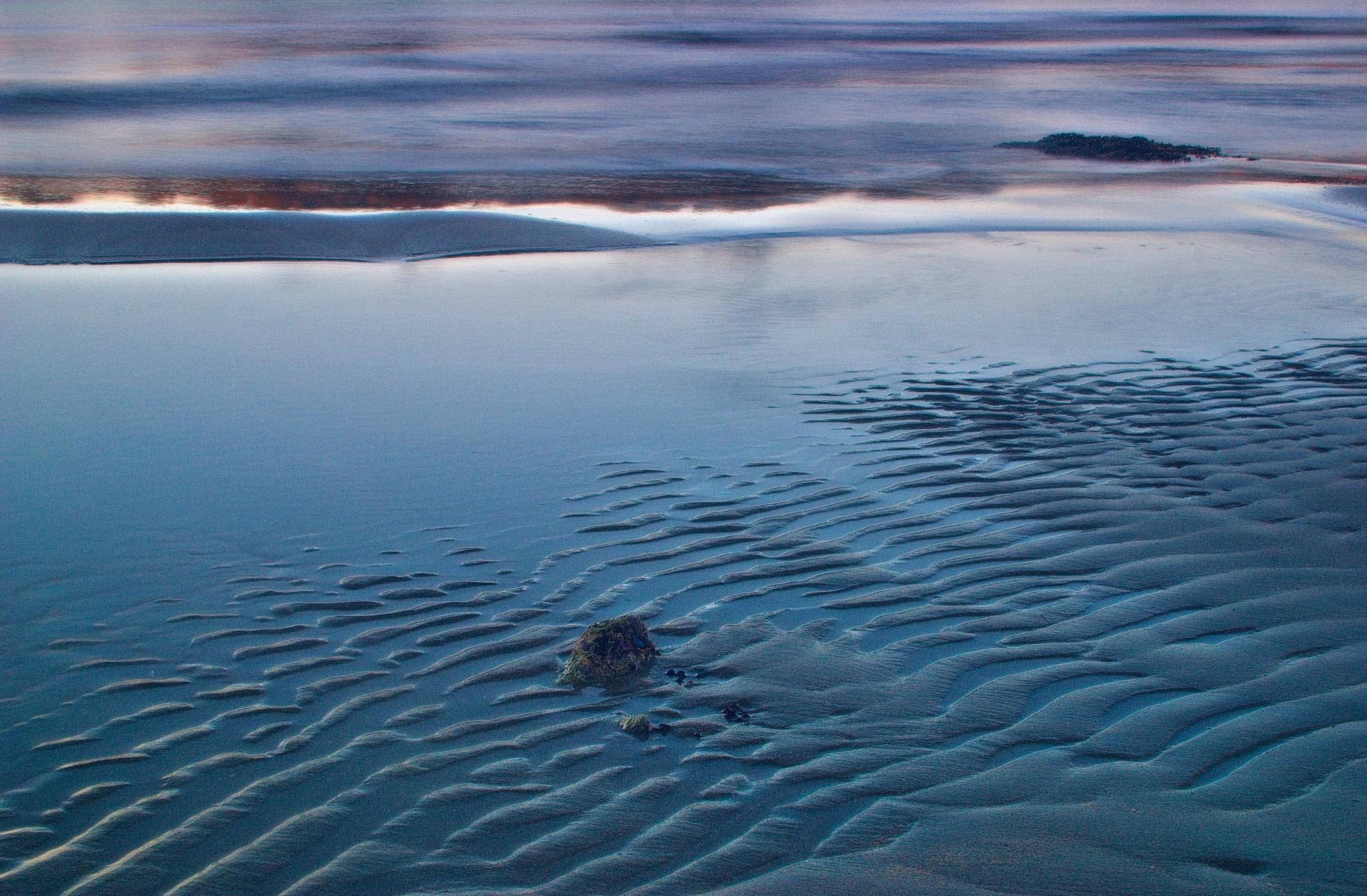 sandy coast by Milos Jacimovic
