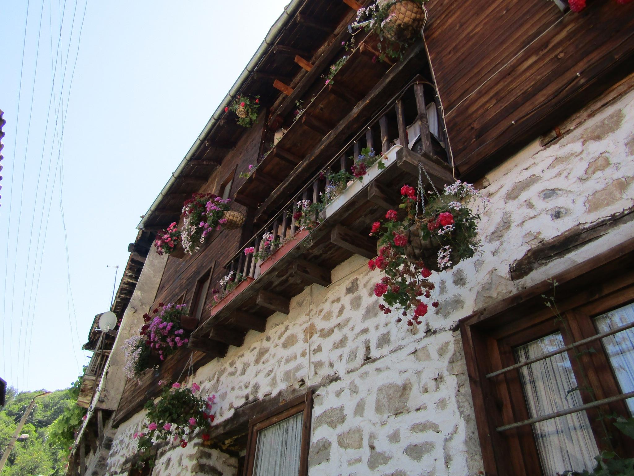 Old bulgarian house by Hari62