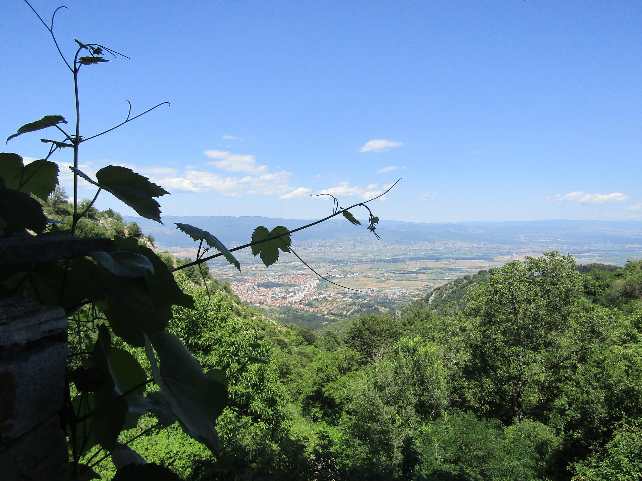 View by Hari62