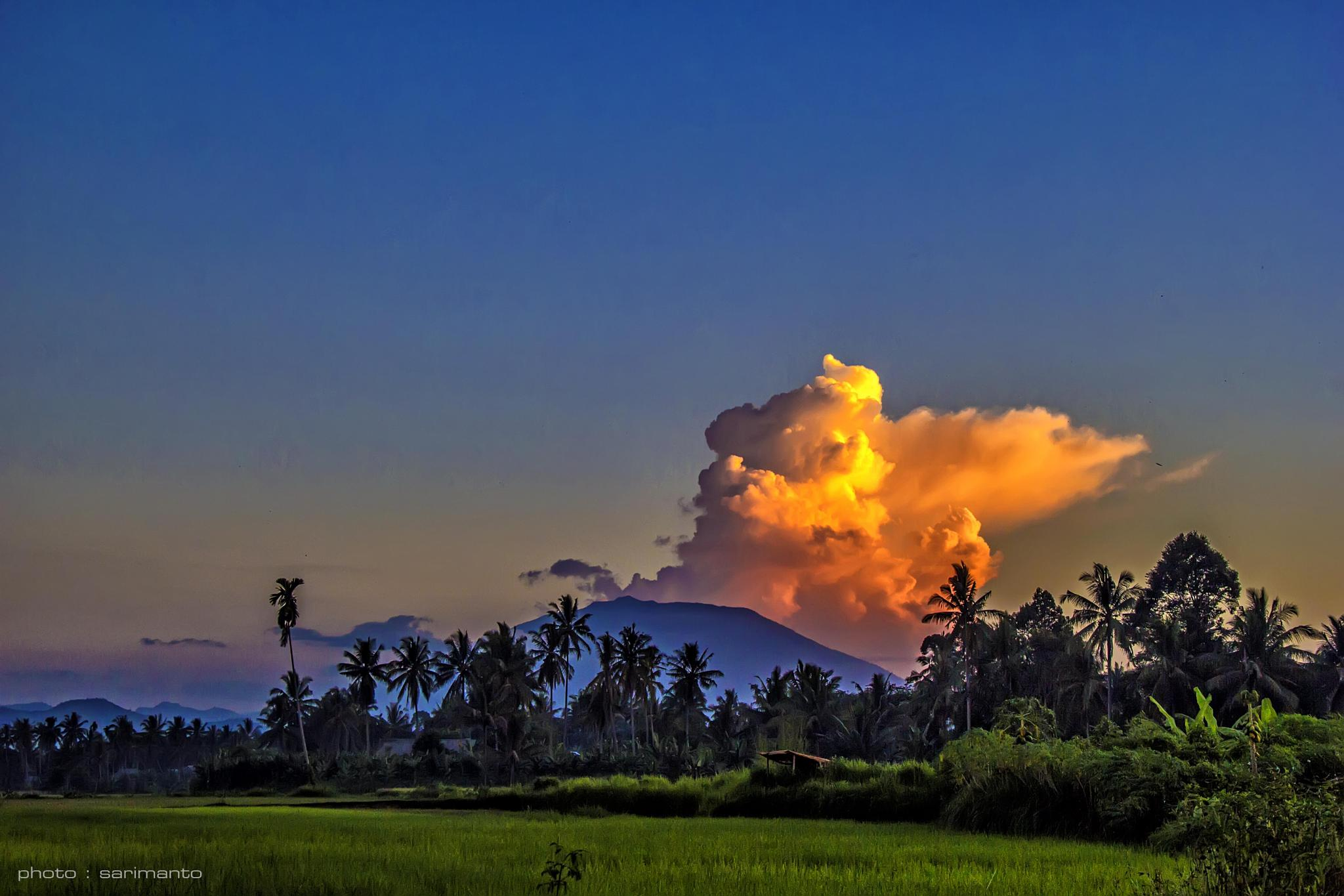 Afternoon clouds by sarimanto