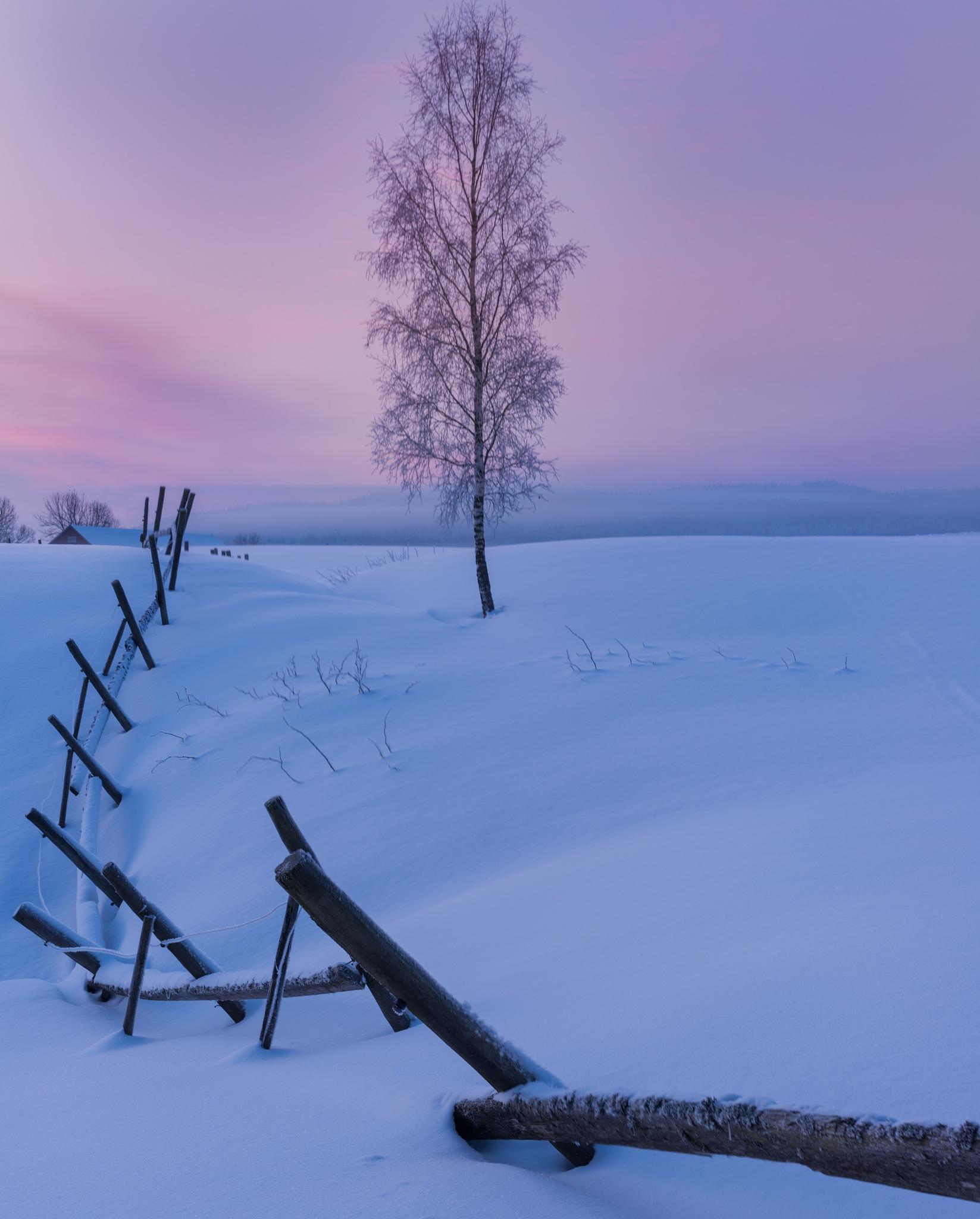 Winter magic by Ermedin Islamcevic