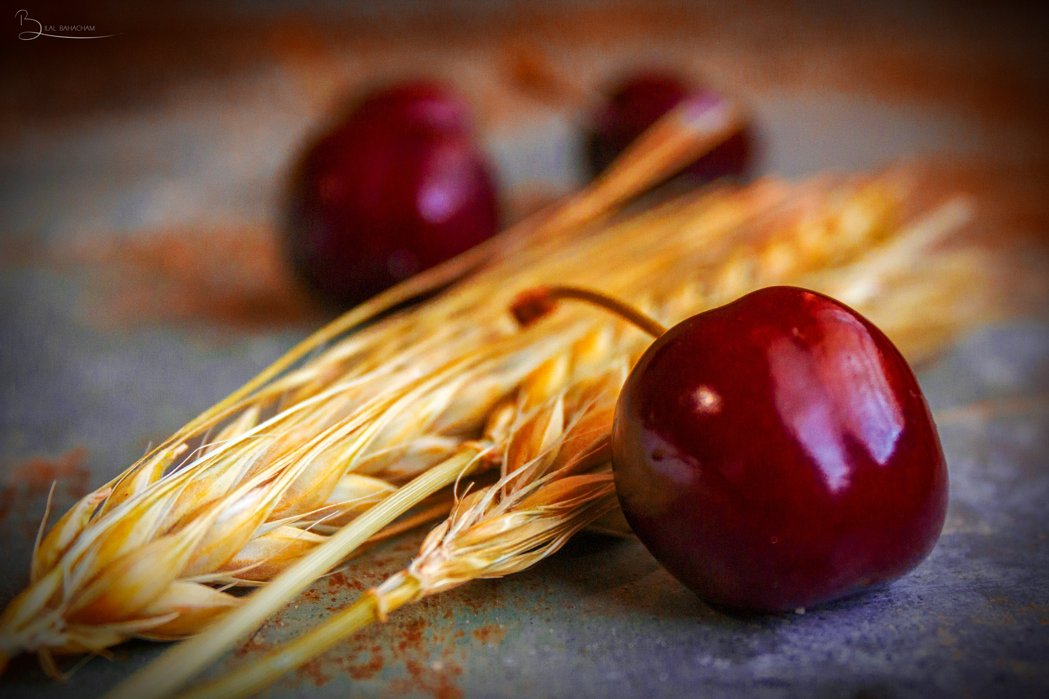 cherries and Wheat spike by Bilalbahacham