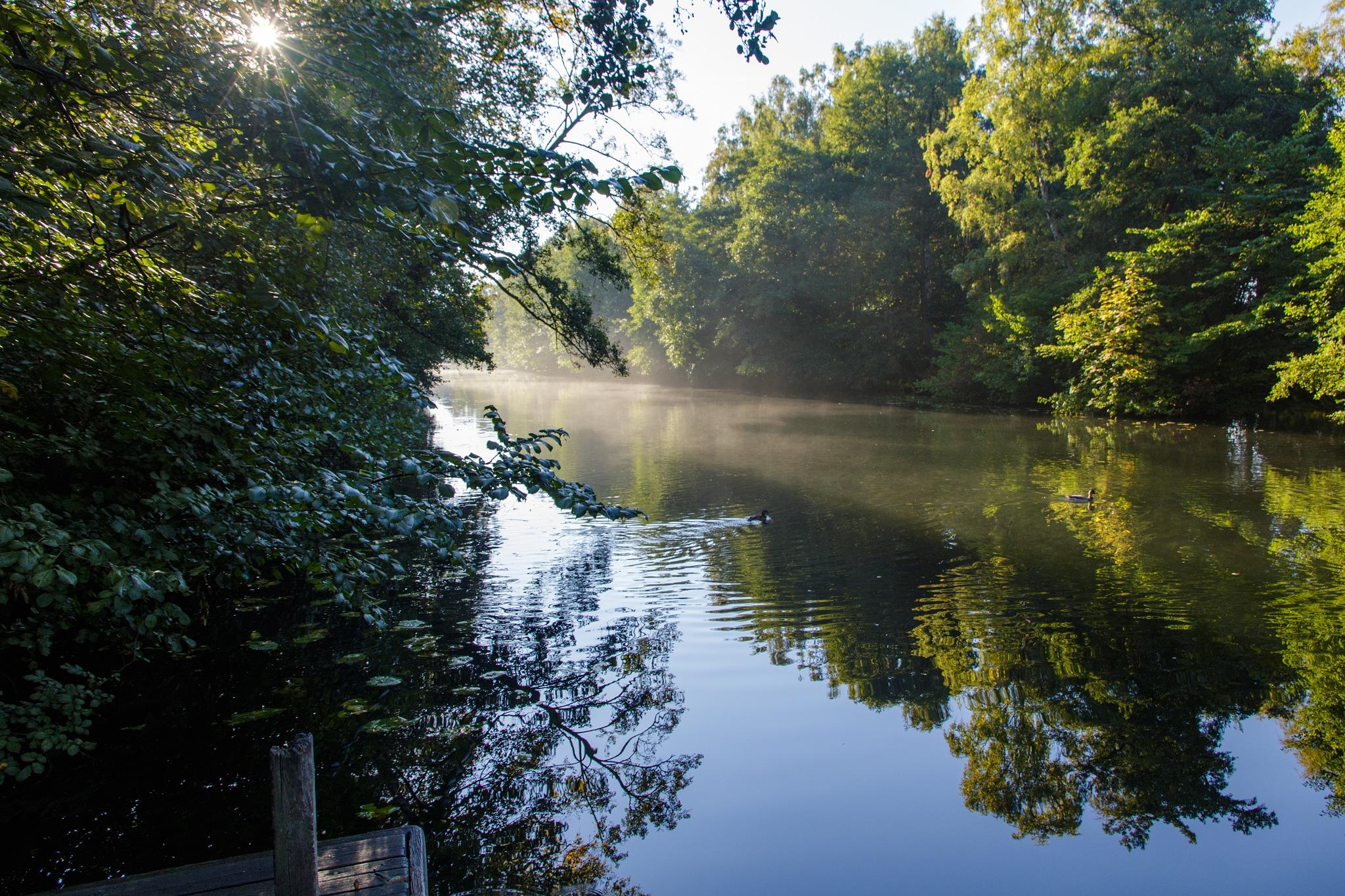 Crossing the river in the morning sun by Bjarne Gertz Pedersen