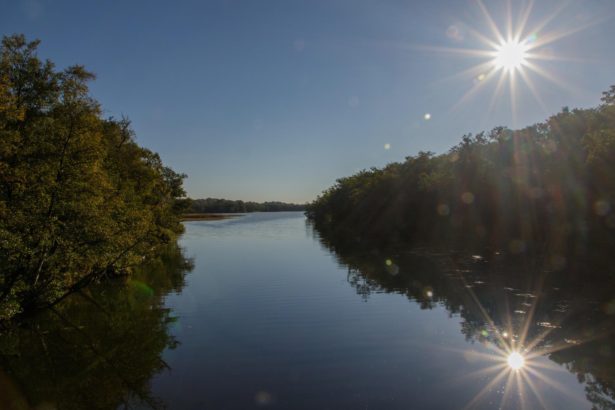 Early morning sun reflections in the lake by Bjarne Gertz Pedersen