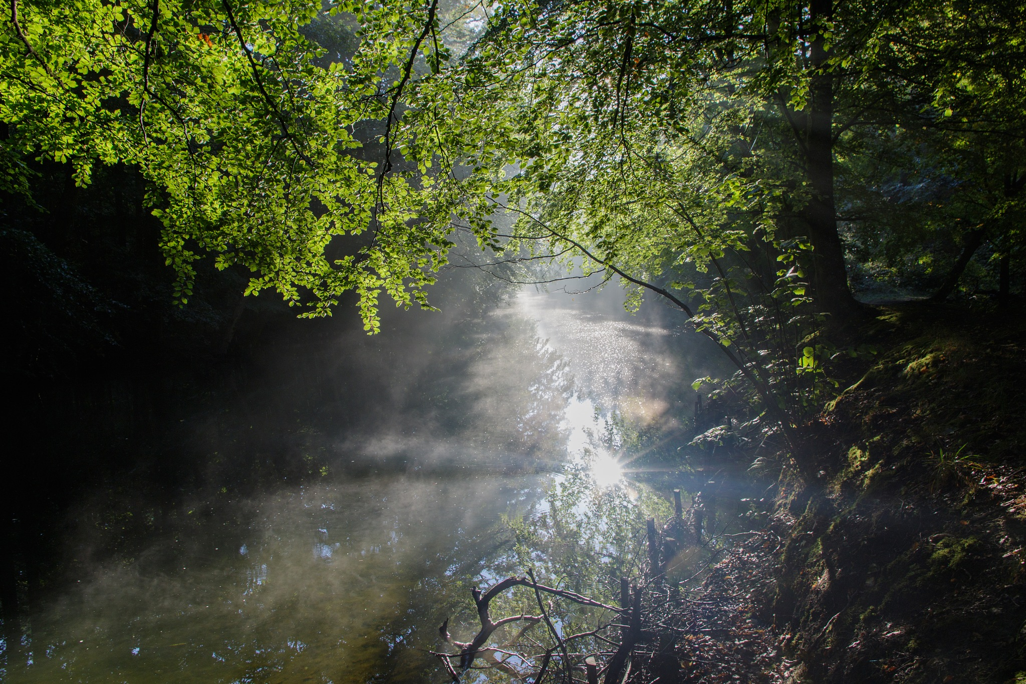 Morning mist and sunrise at the small river by Bjarne Gertz Pedersen