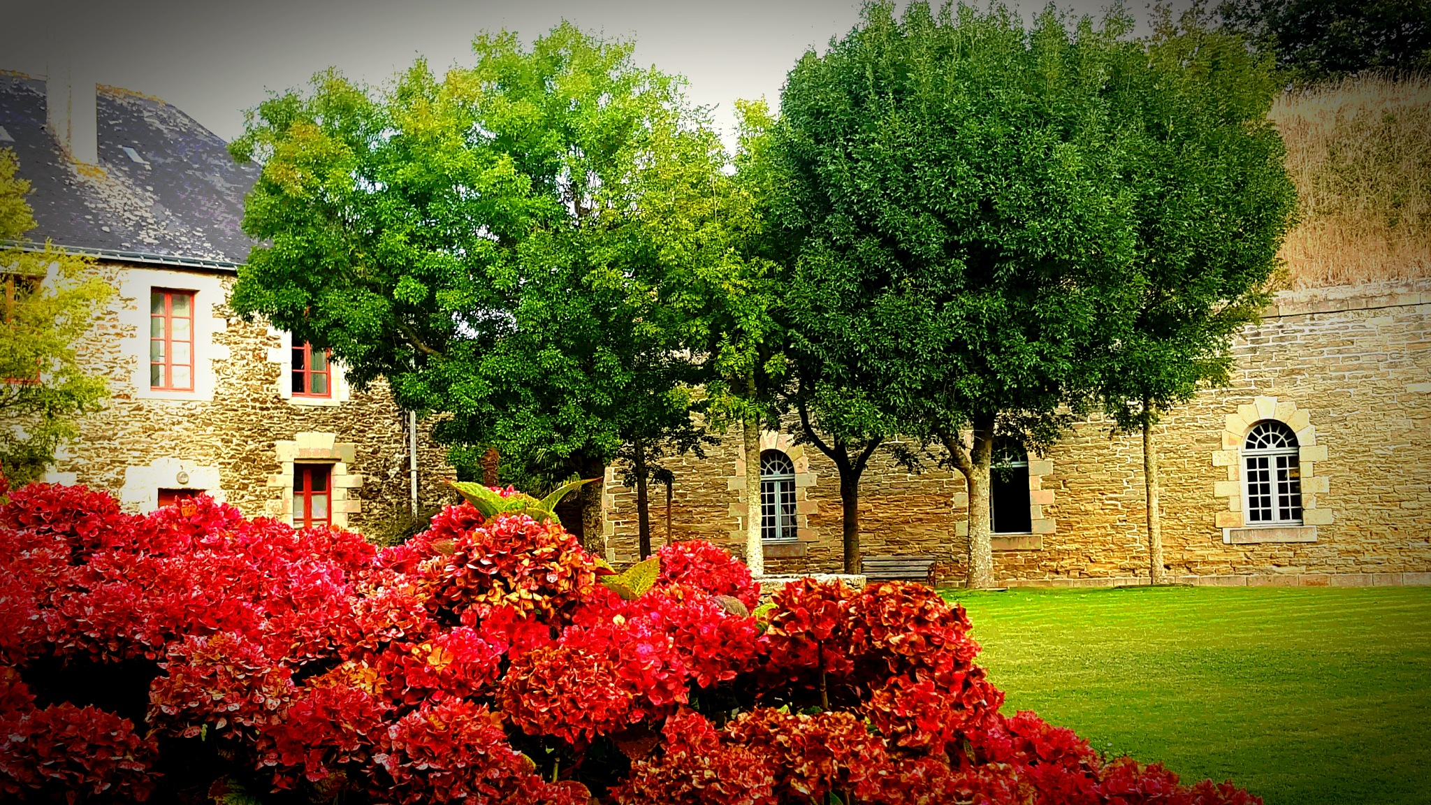 Citadelle garden by Tanit